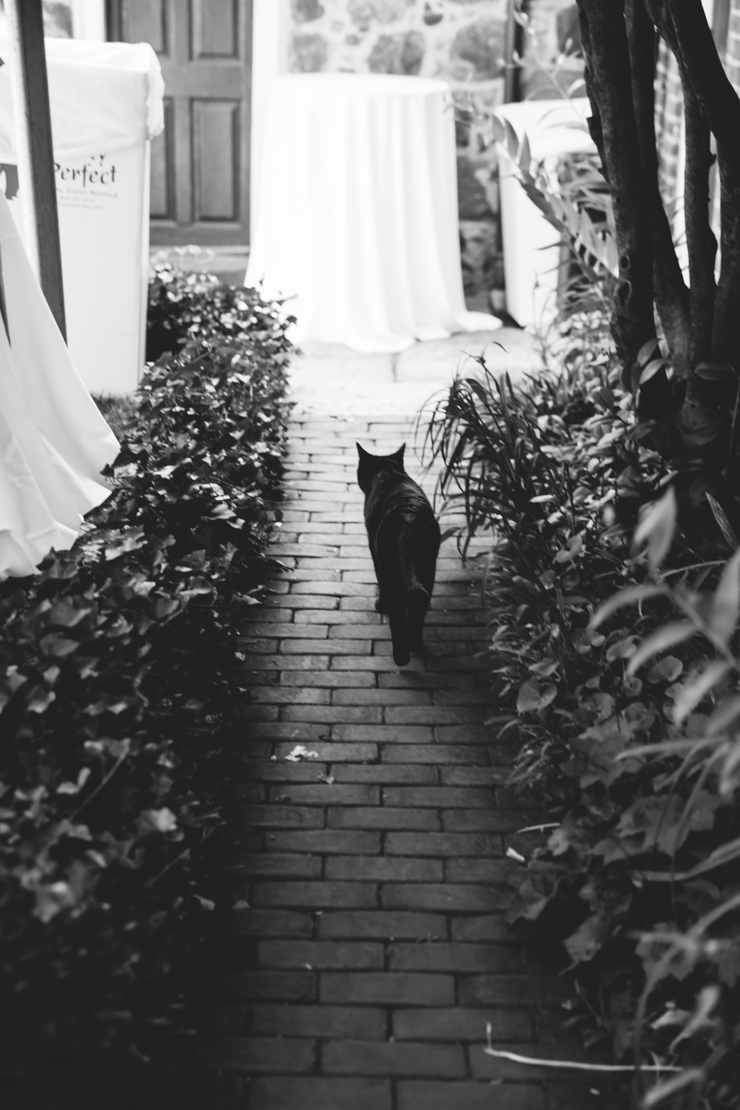 richmondvaweddingphotography-poemuseum-7.jpg