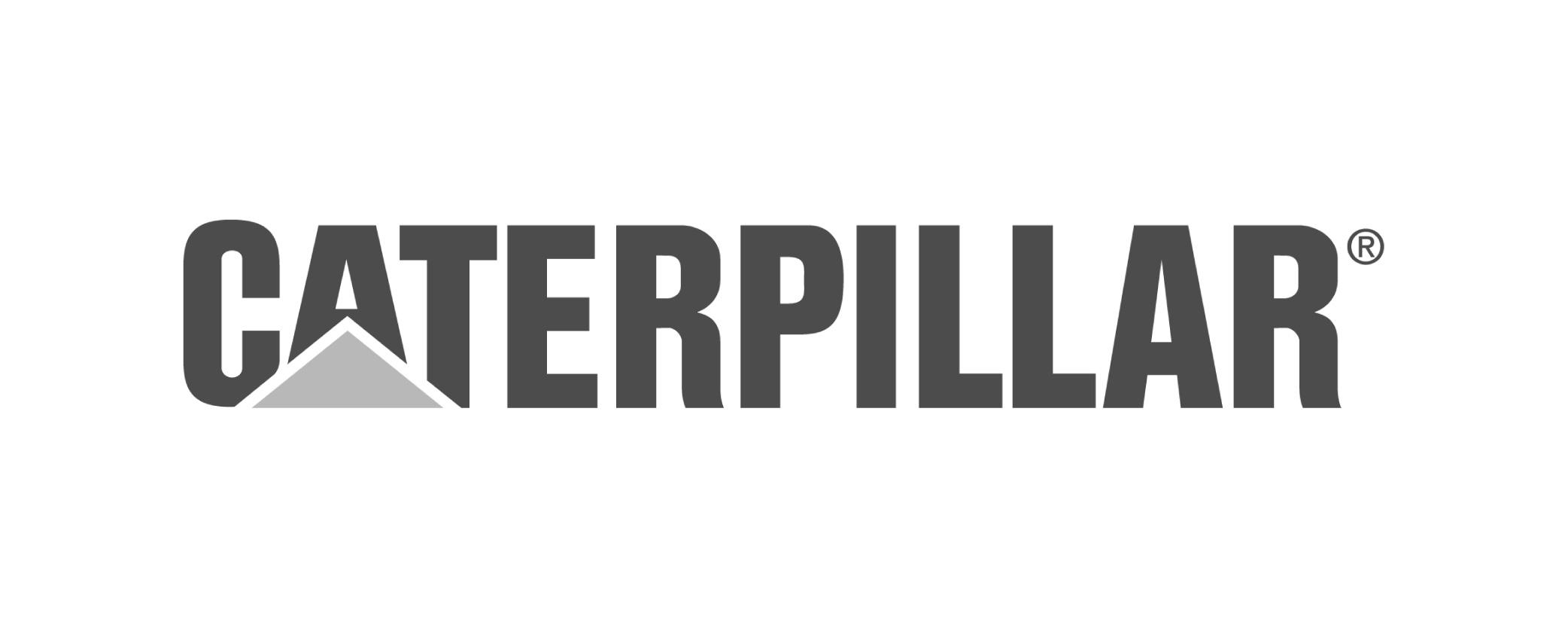 Caterpillar Grey 500 x 200-01.jpg