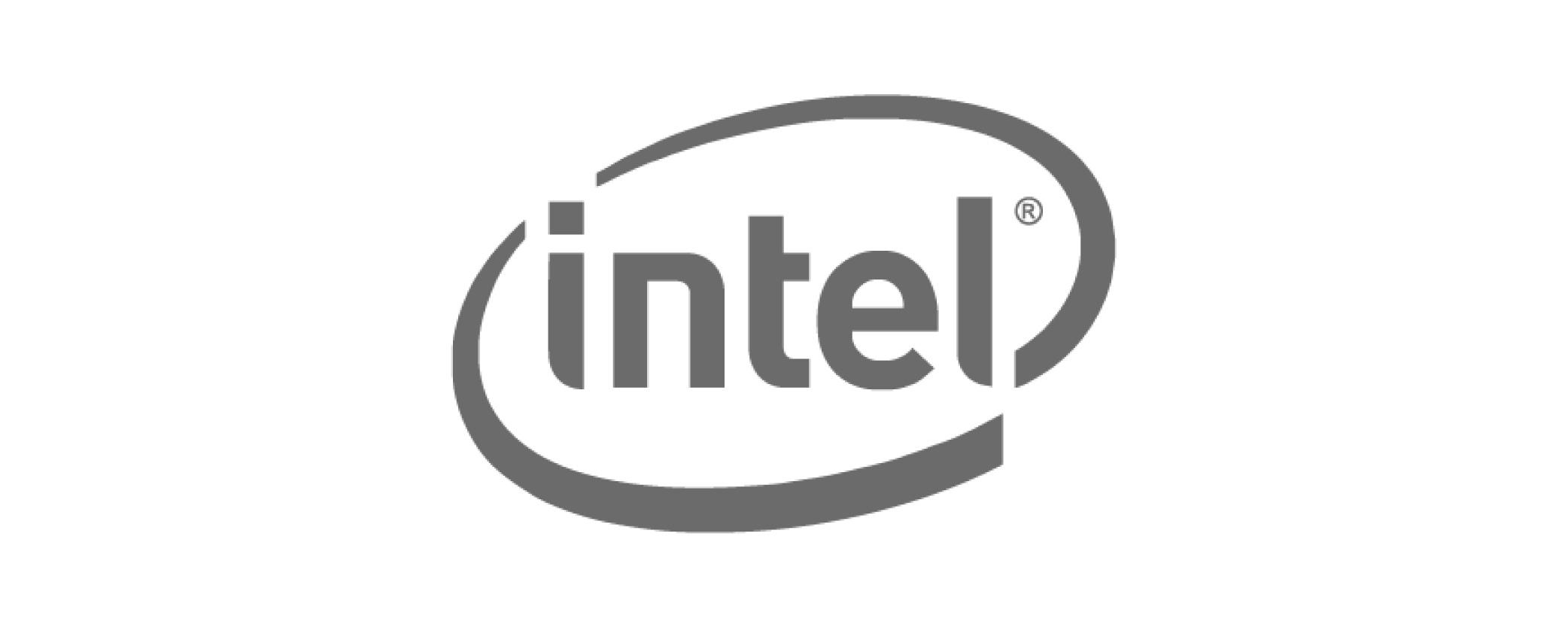 Intel Grey 500 x 200-01.jpg