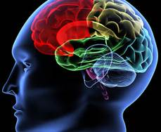 rainbow brain 1.jpeg