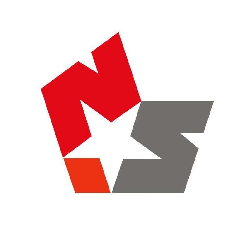 Newstar Logo.jpg