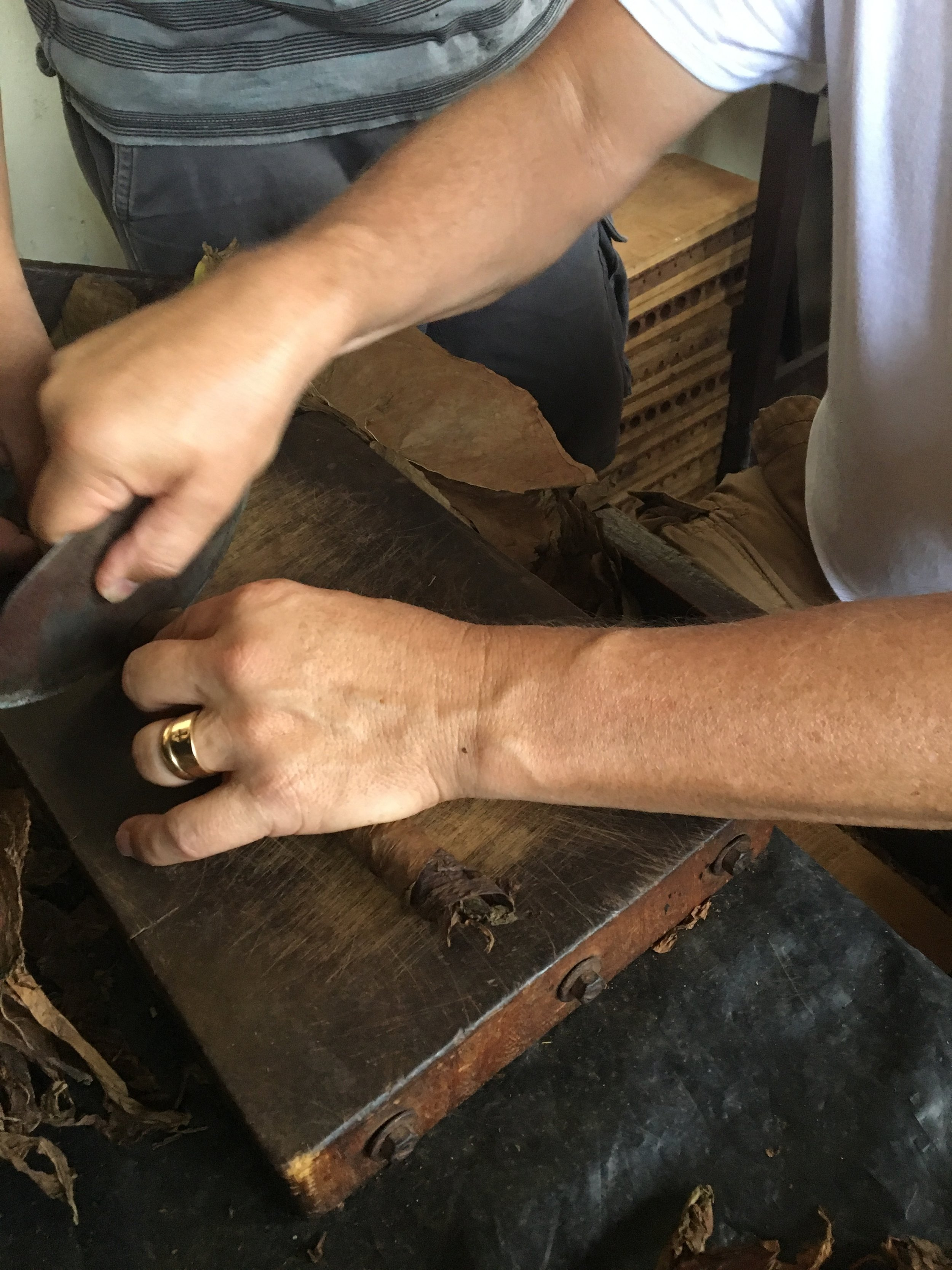 mastering the art of rolling a cigar.