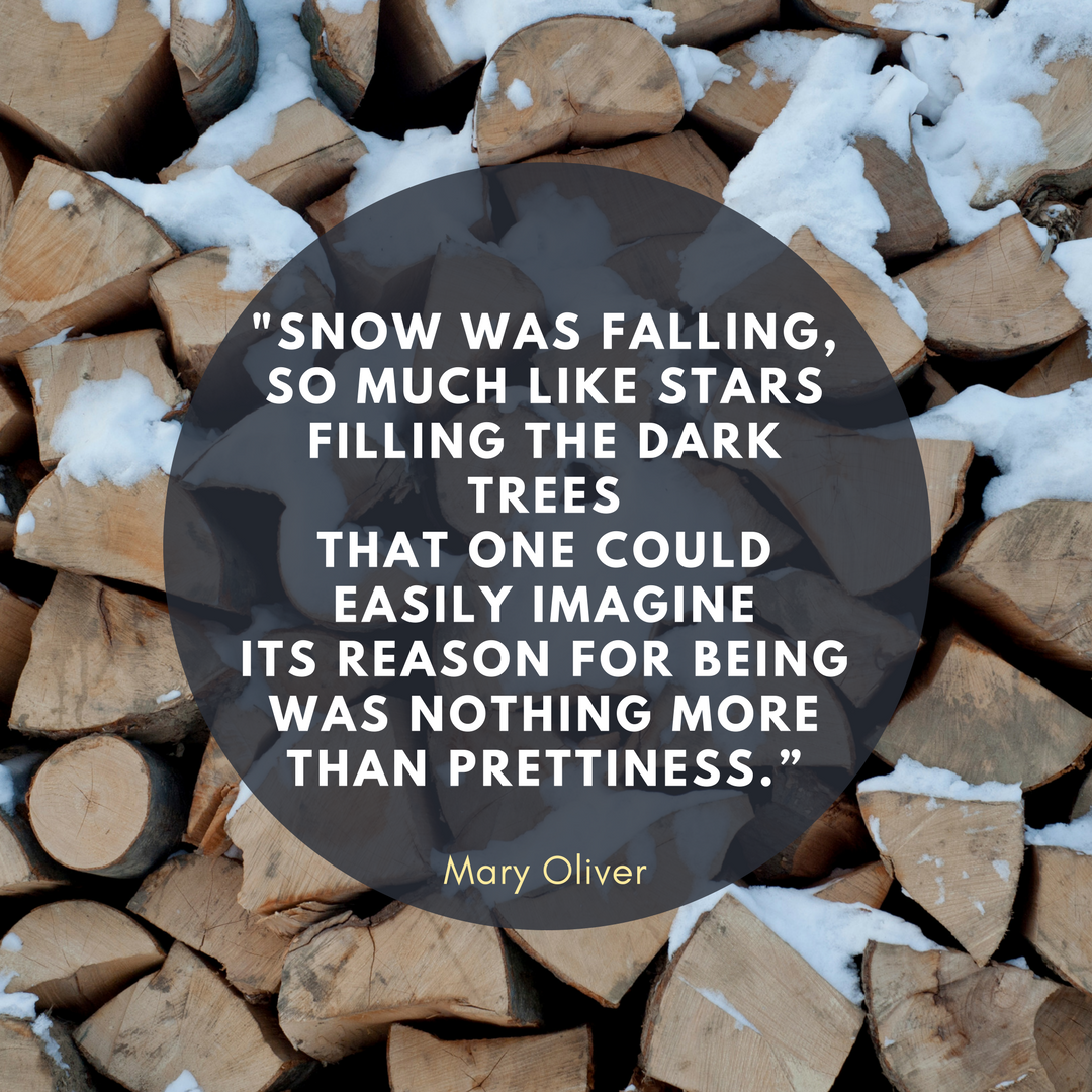 """_Snow was falling,so much like starsfilling the dark treesthat one could easily imagineits reason for being was nothing morethan prettiness."""" ― Mary Oliver.png"""