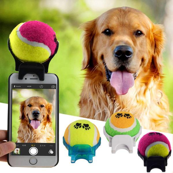 Dog-Selfie-Helper.jpg