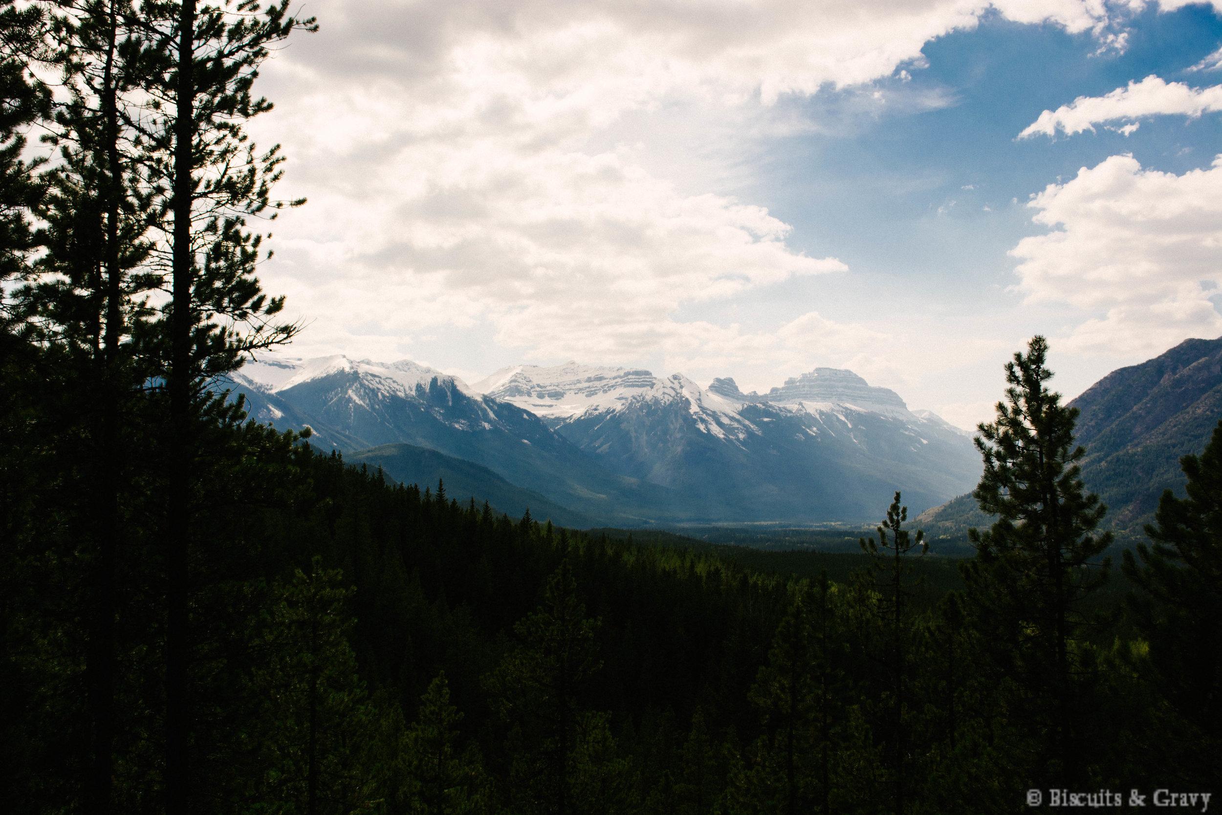Banff (48 of 73).jpg