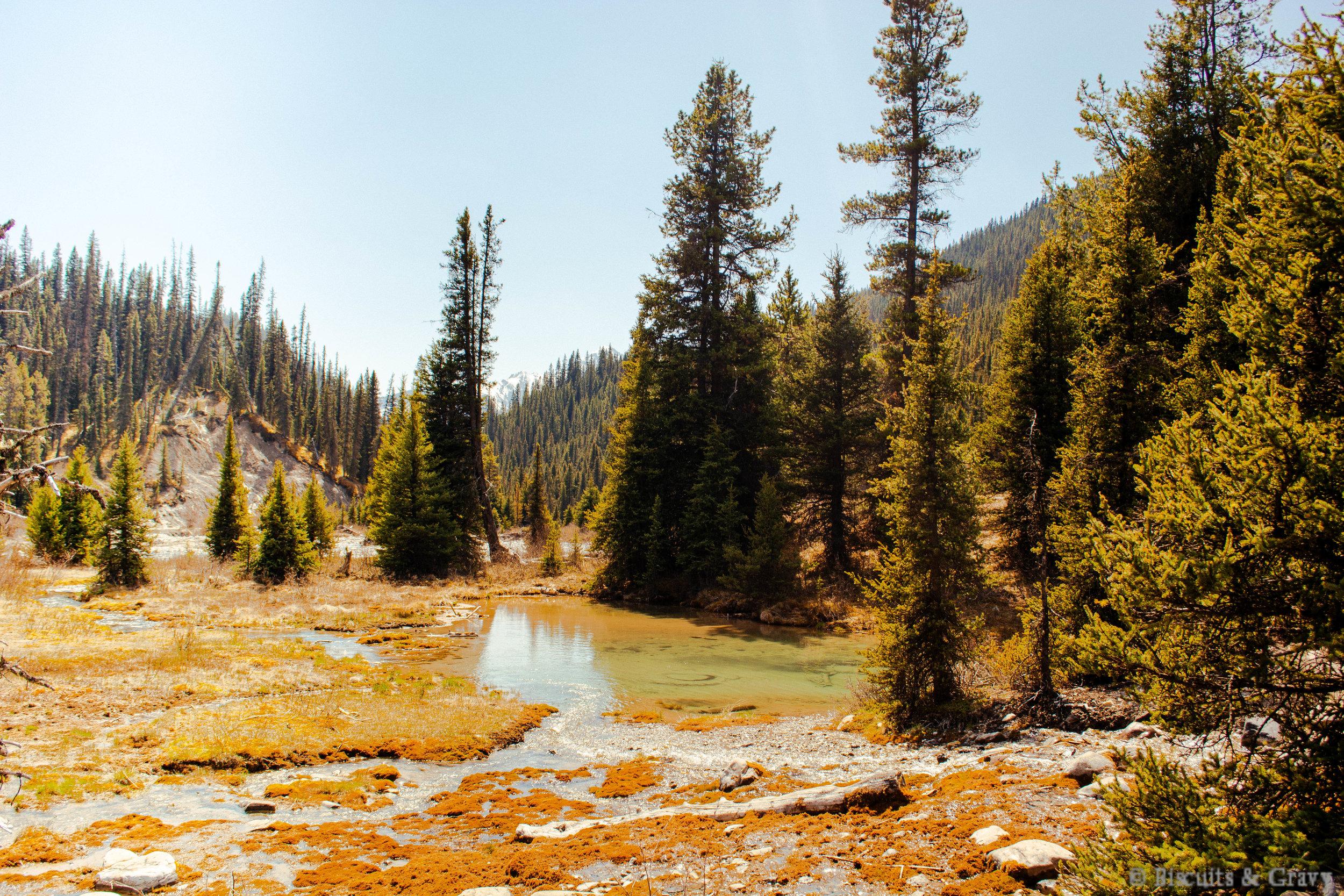Banff (68 of 73).jpg
