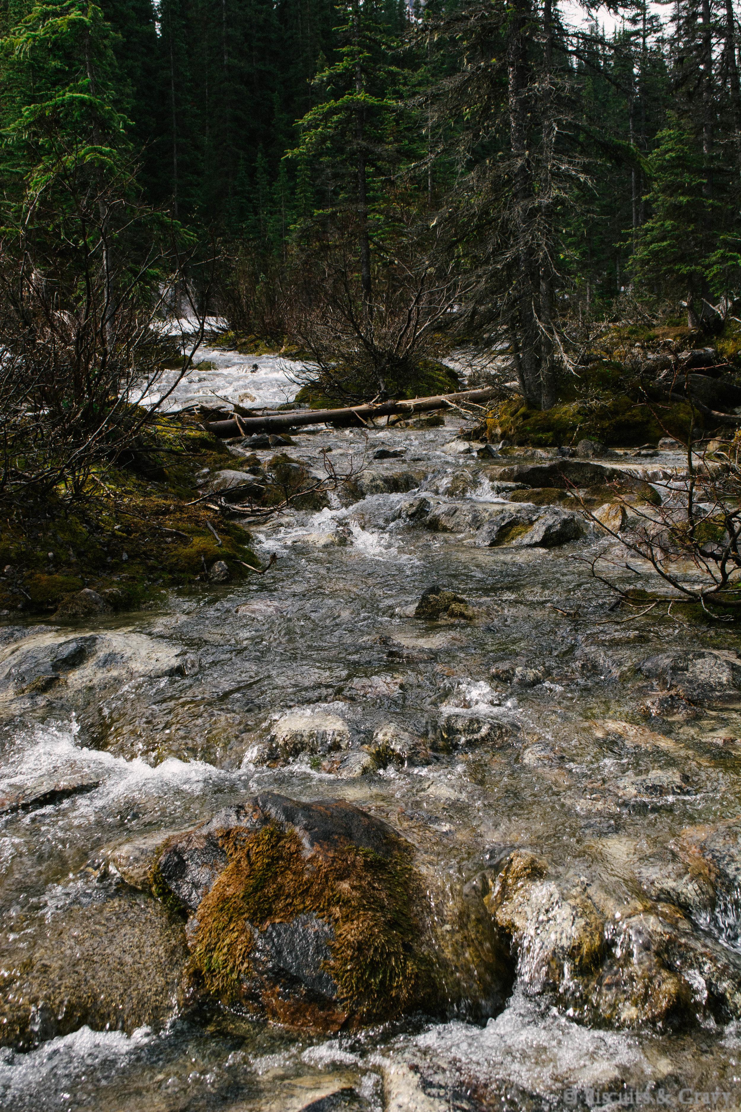 Banff (37 of 73).jpg