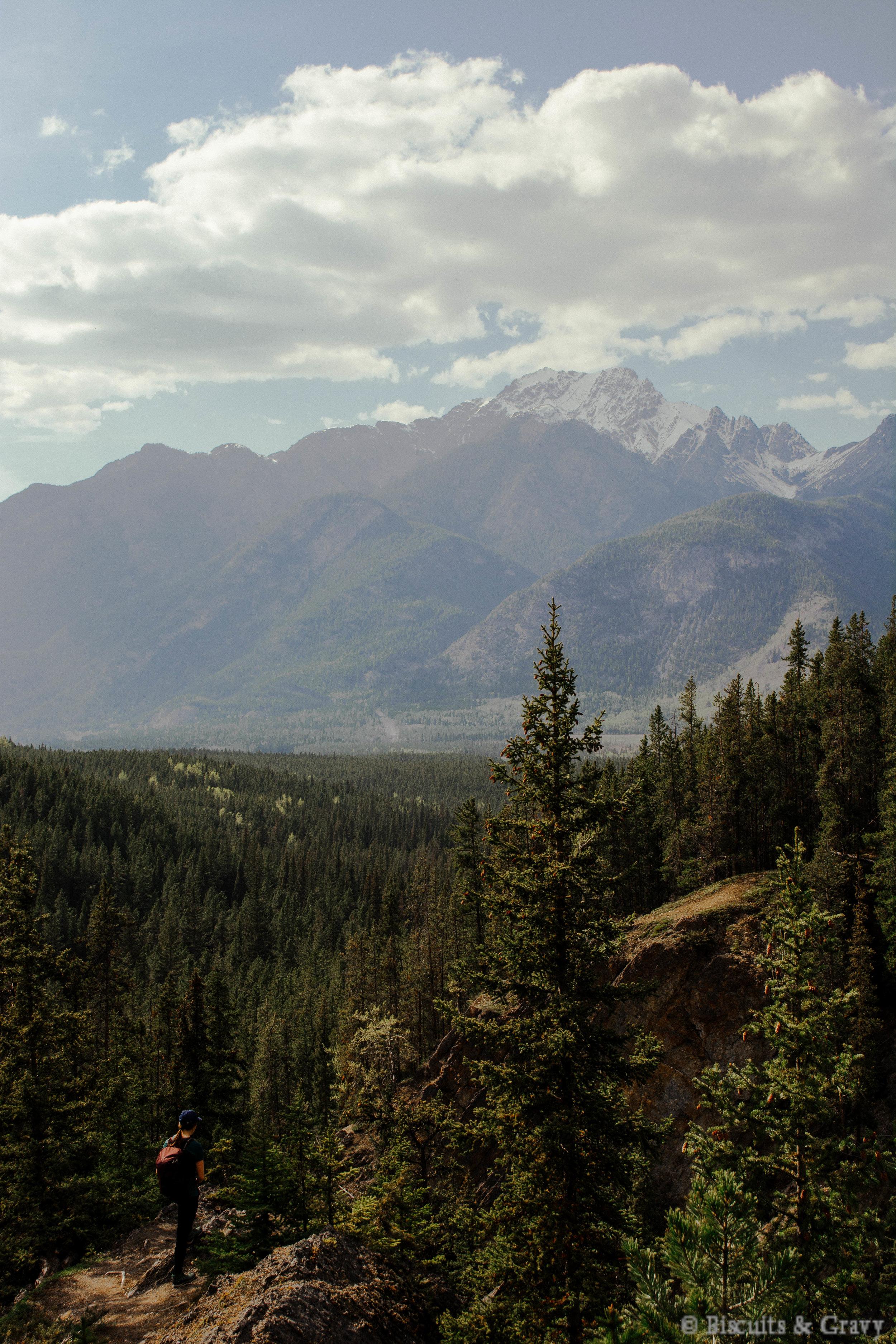 Banff (58 of 73).jpg