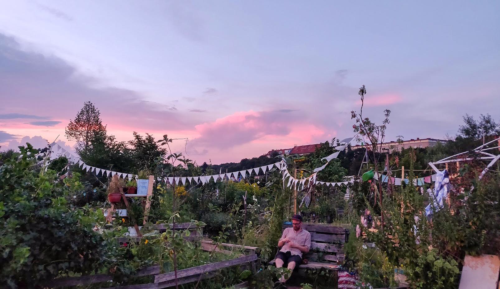 Den lilla knasiga trädgården på Tempelhof.
