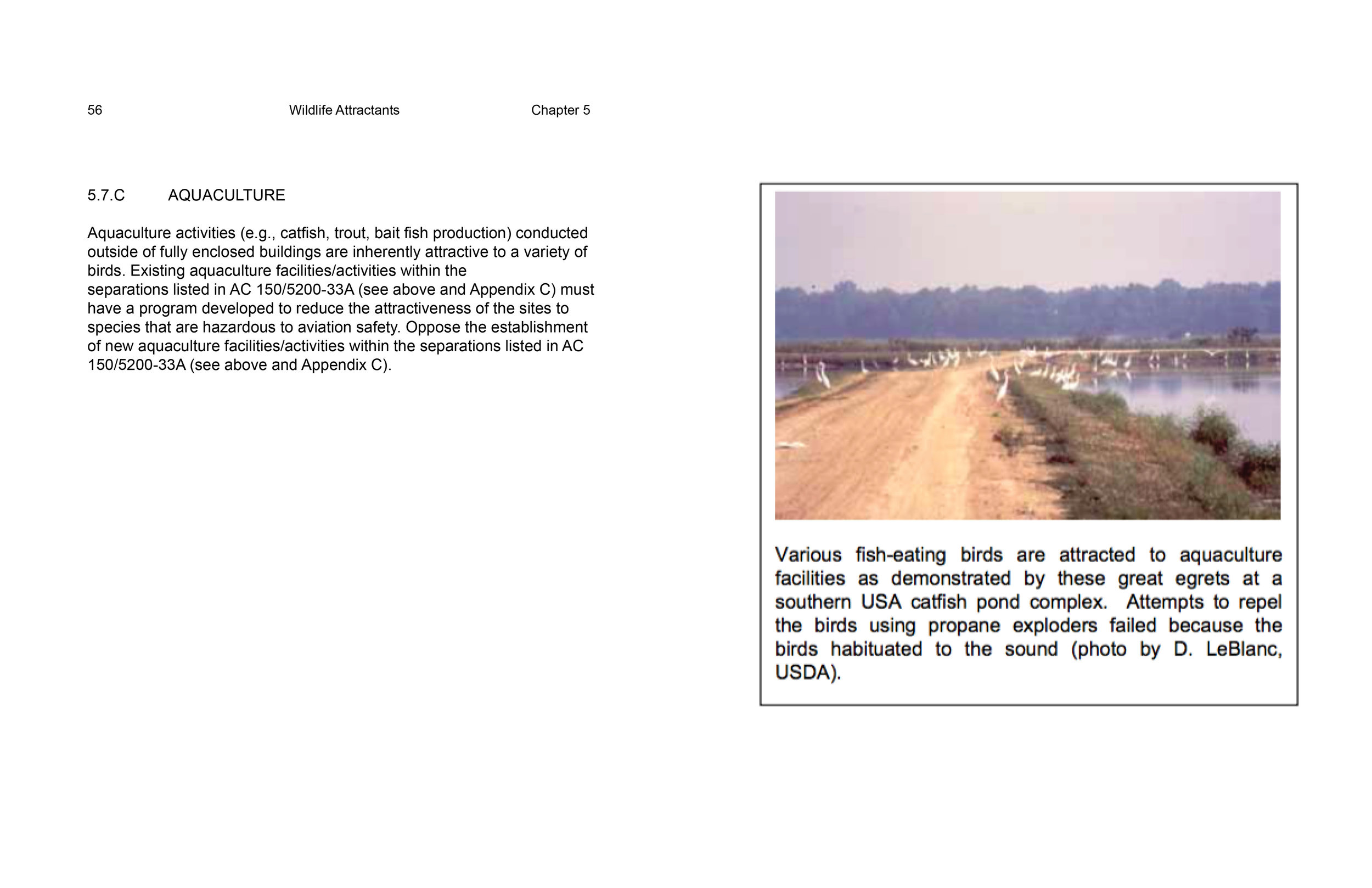 wildlife-hazard-managment-short15.jpg