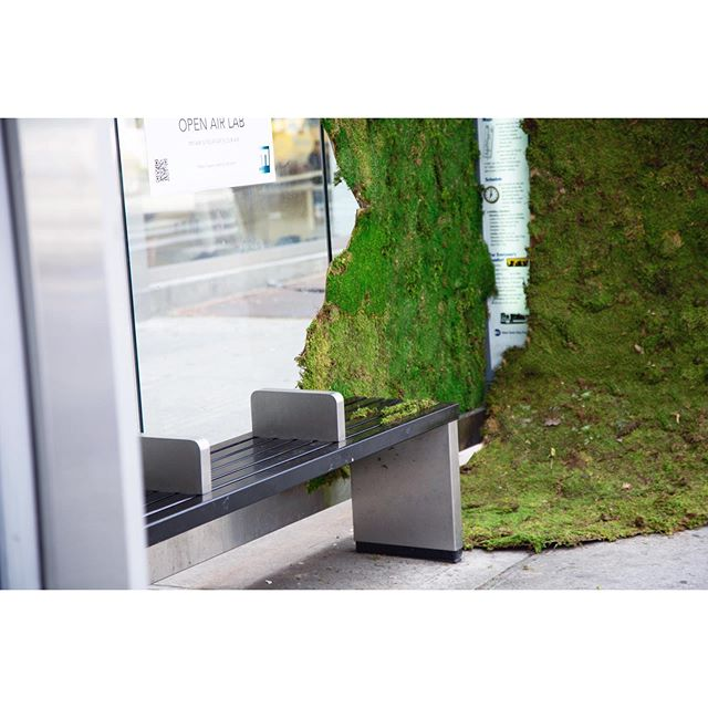 A small amount of moss has a huge impact on purifying the air. What if there was more moss in public spaces? What if our bus stops were covered in it? #naturalfilter #moss #cleanair