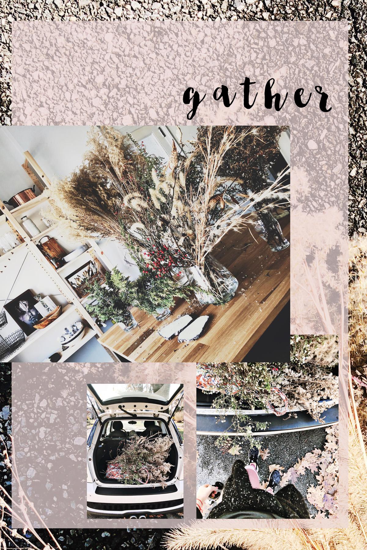 treehowto2.jpg