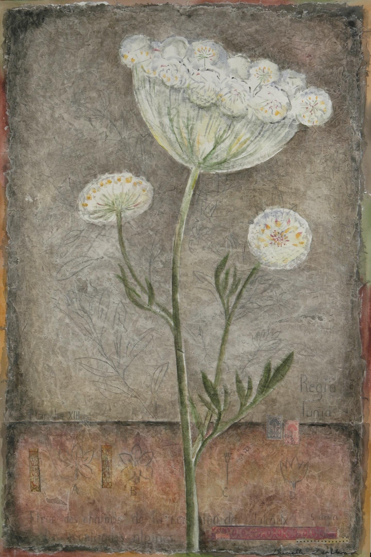 """Fleur de Carotte  36"""" x 24"""""""