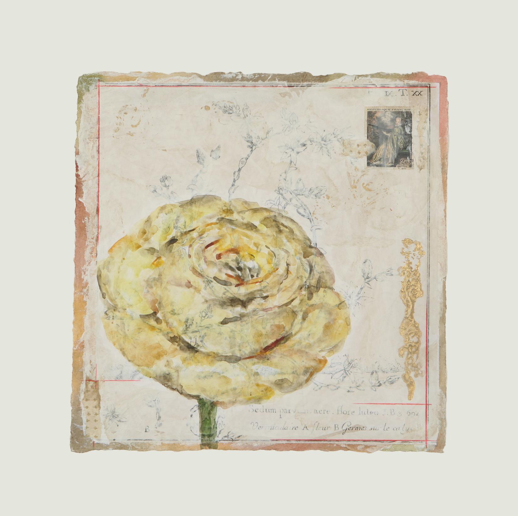 """Corolle de Rose Jaune  12"""" x 12"""""""