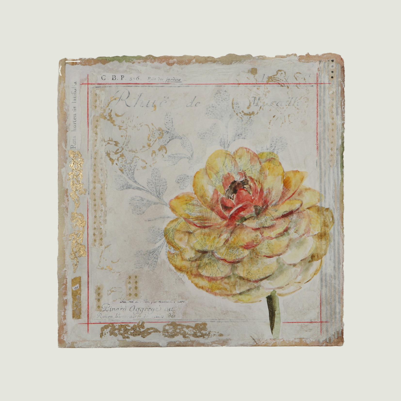 "Corolle de Begonia #2  12"" x 12"""