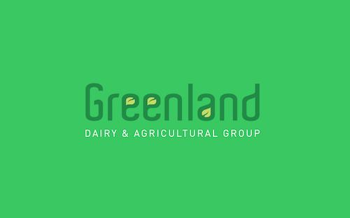 greenland logo design graphic designer maza mazaaa