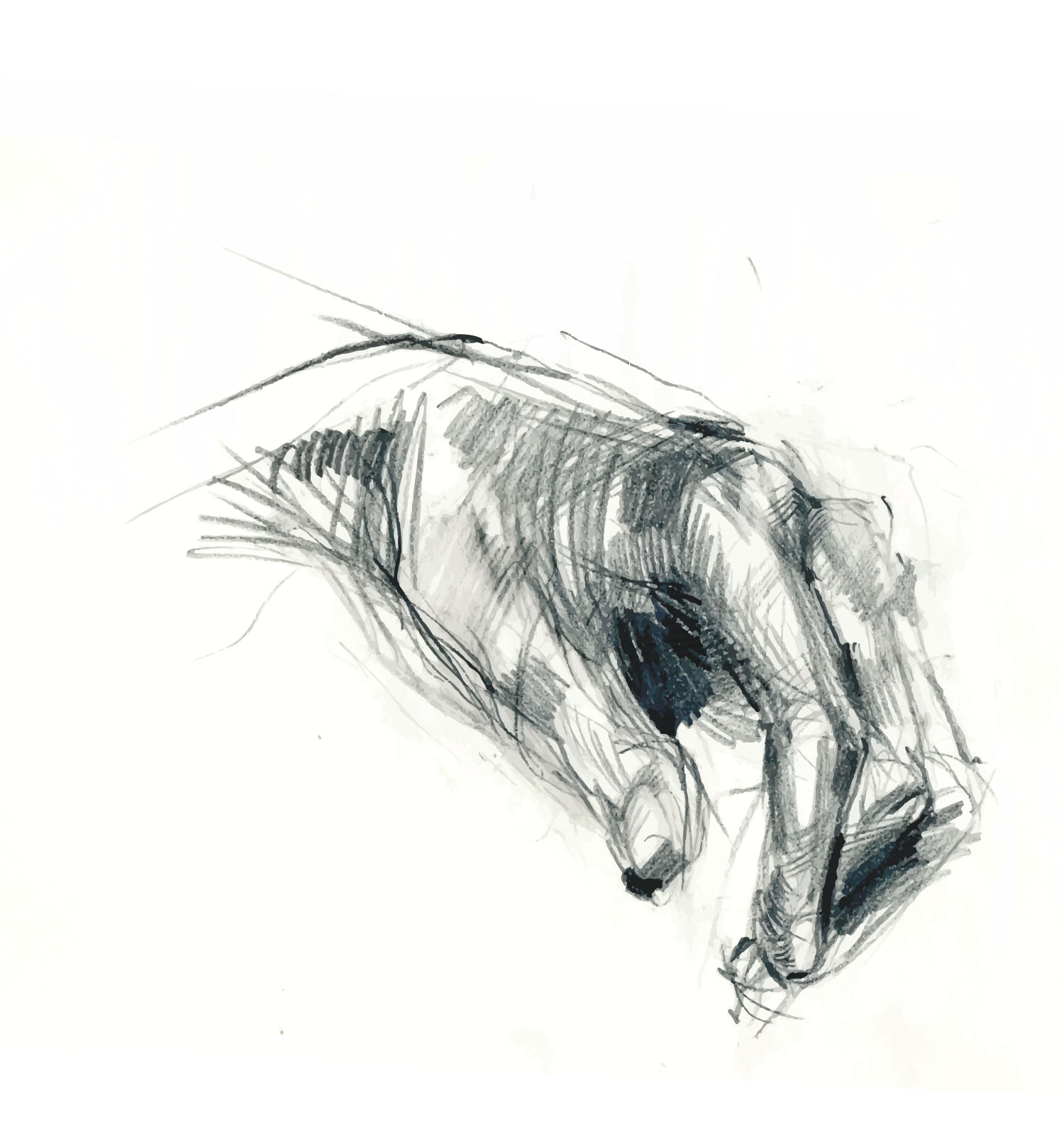 hand-sketch.jpg