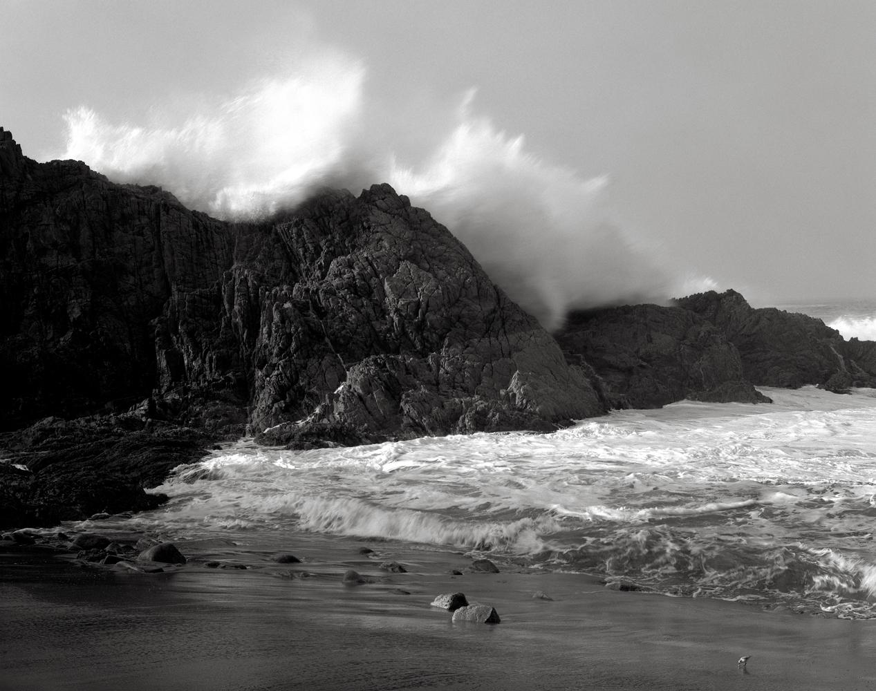 Large Wave, Little Bird, McClure's Beach