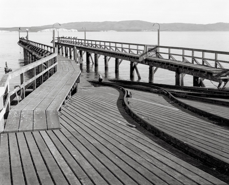 Sea Lion, Old Lifeboat Station, Drake's Bay