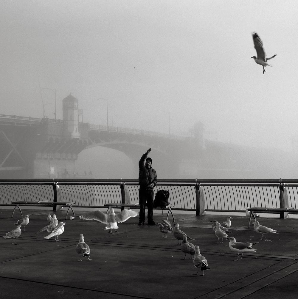 Man with Birds, Portland