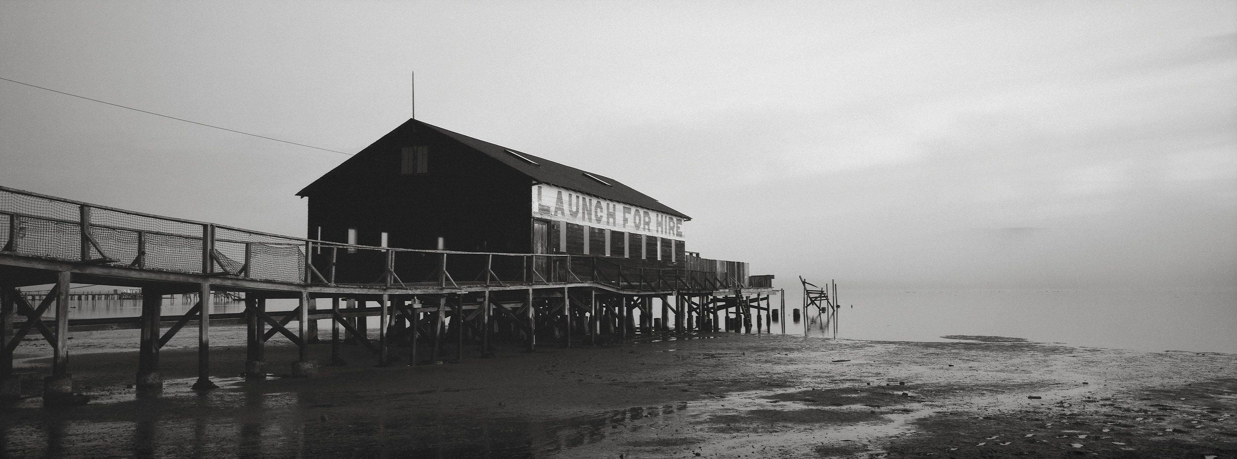 Early Morning, Tomales Bay, California