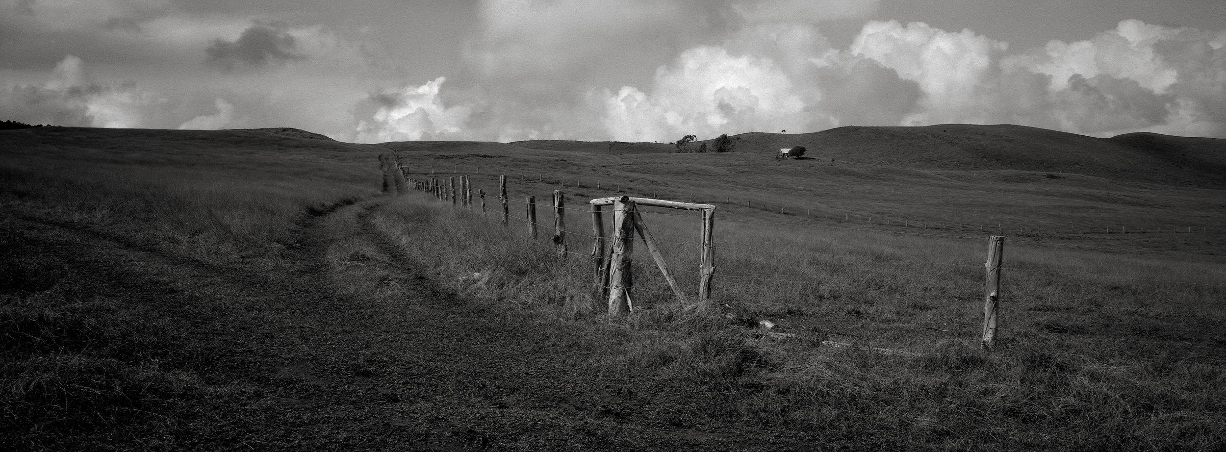 Along a Road, Easter Island