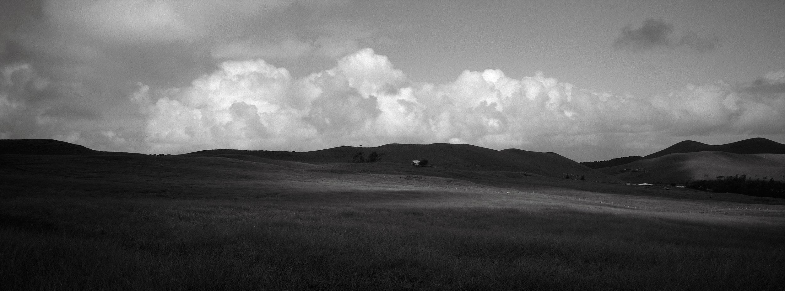 In a Field, Easter Island