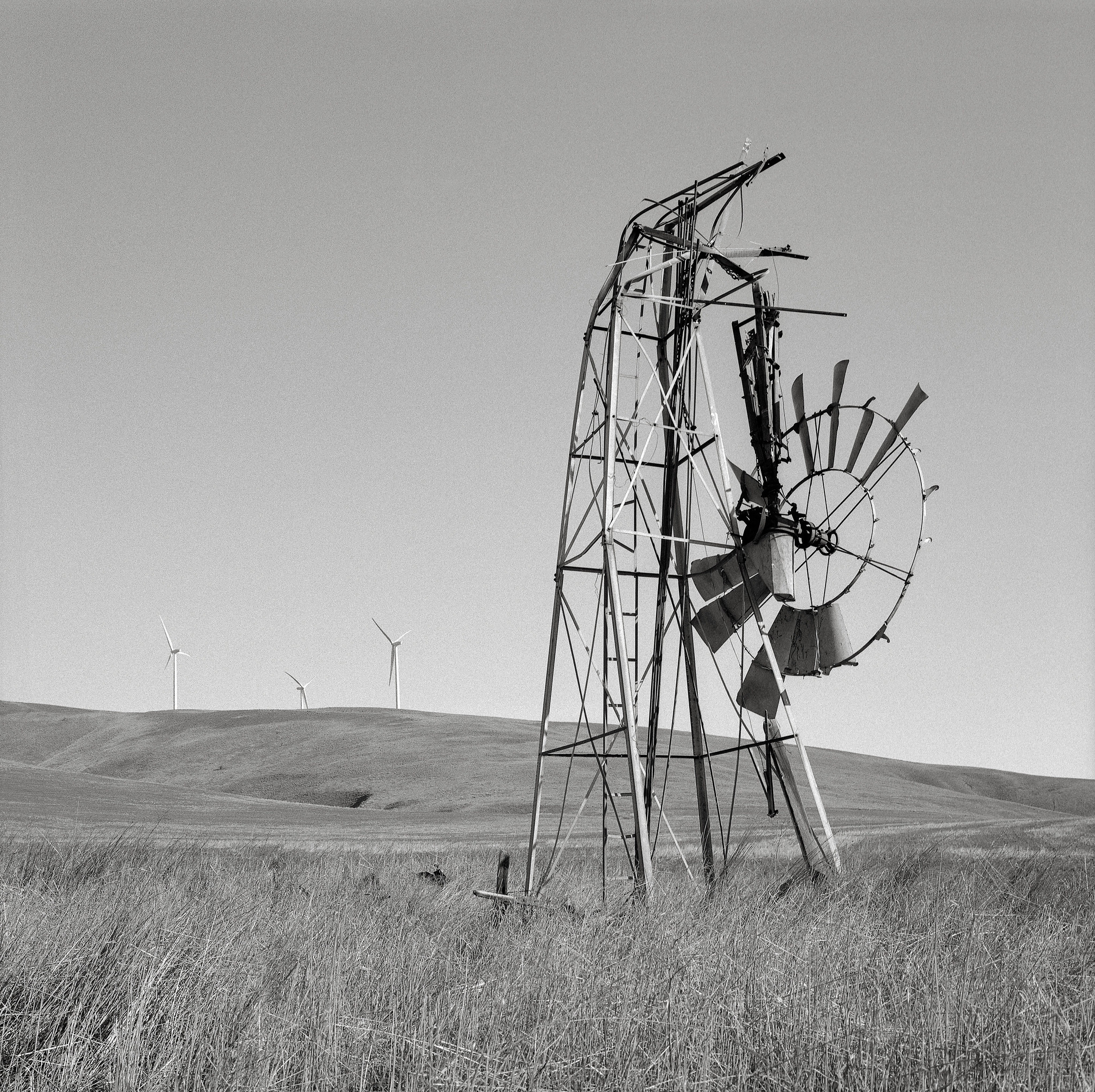 Windmills, Washington