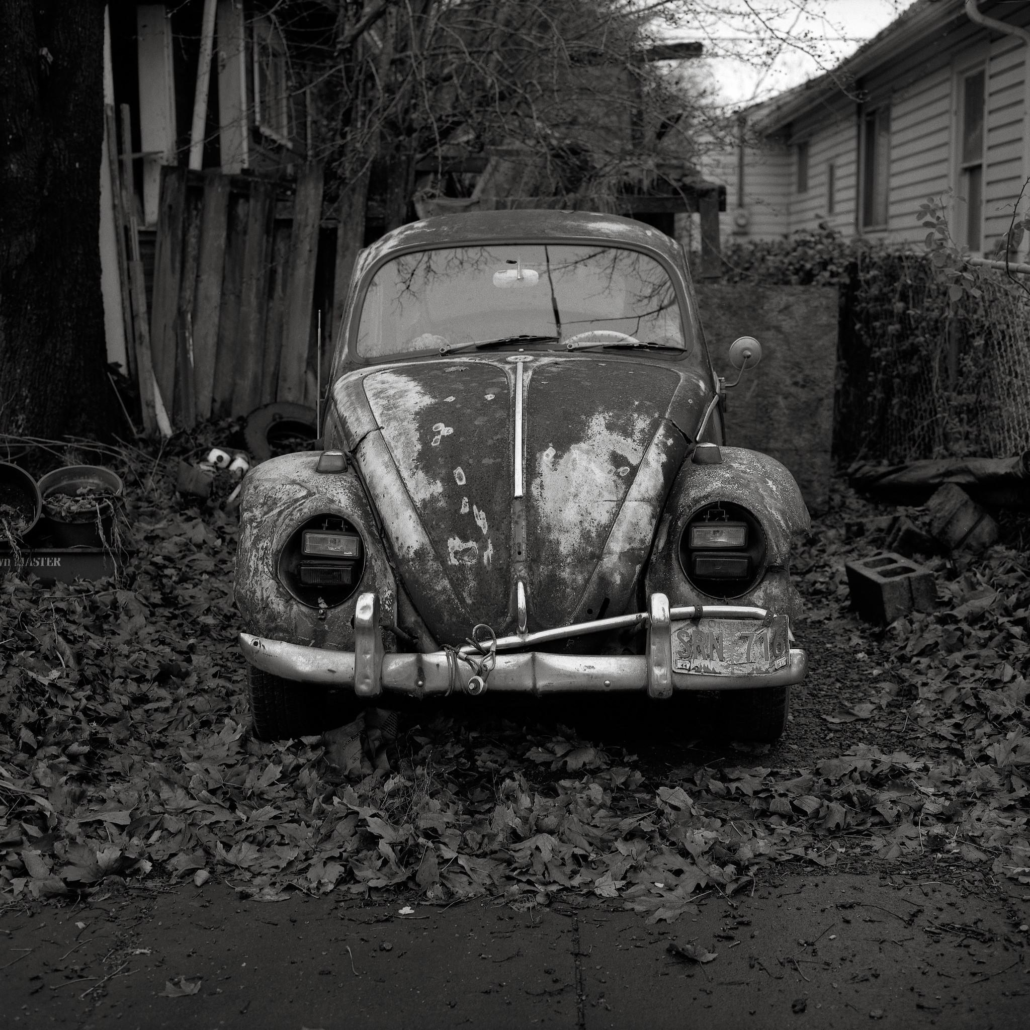 Volkswagen, Portland