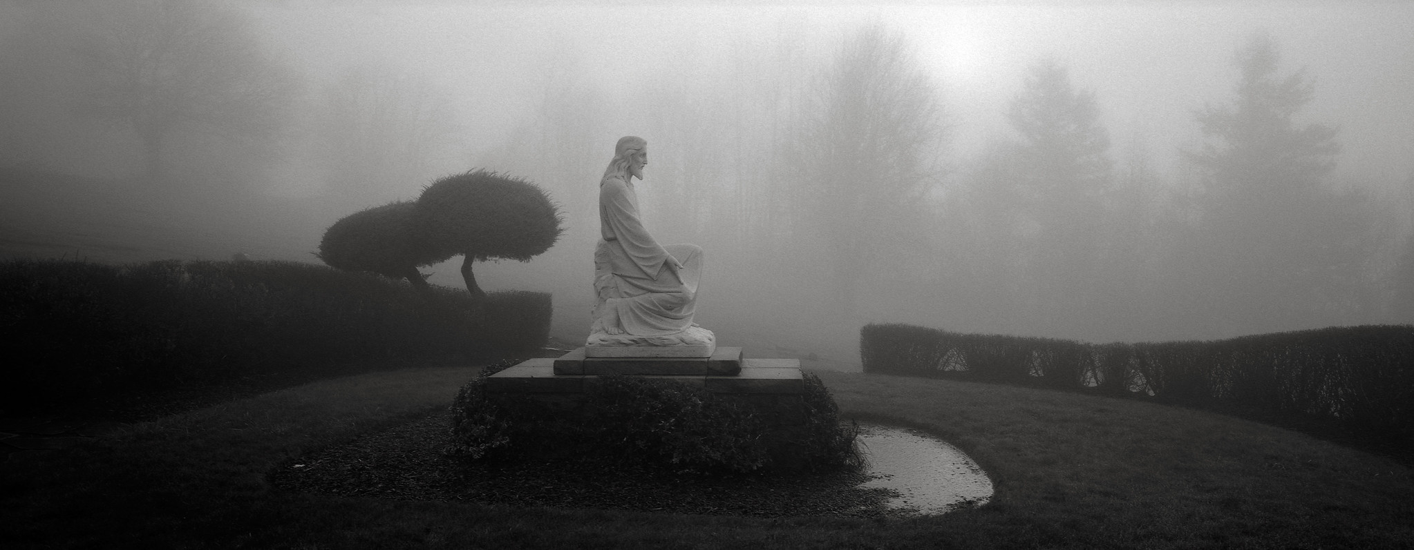 Jesus in the Fog, Portland