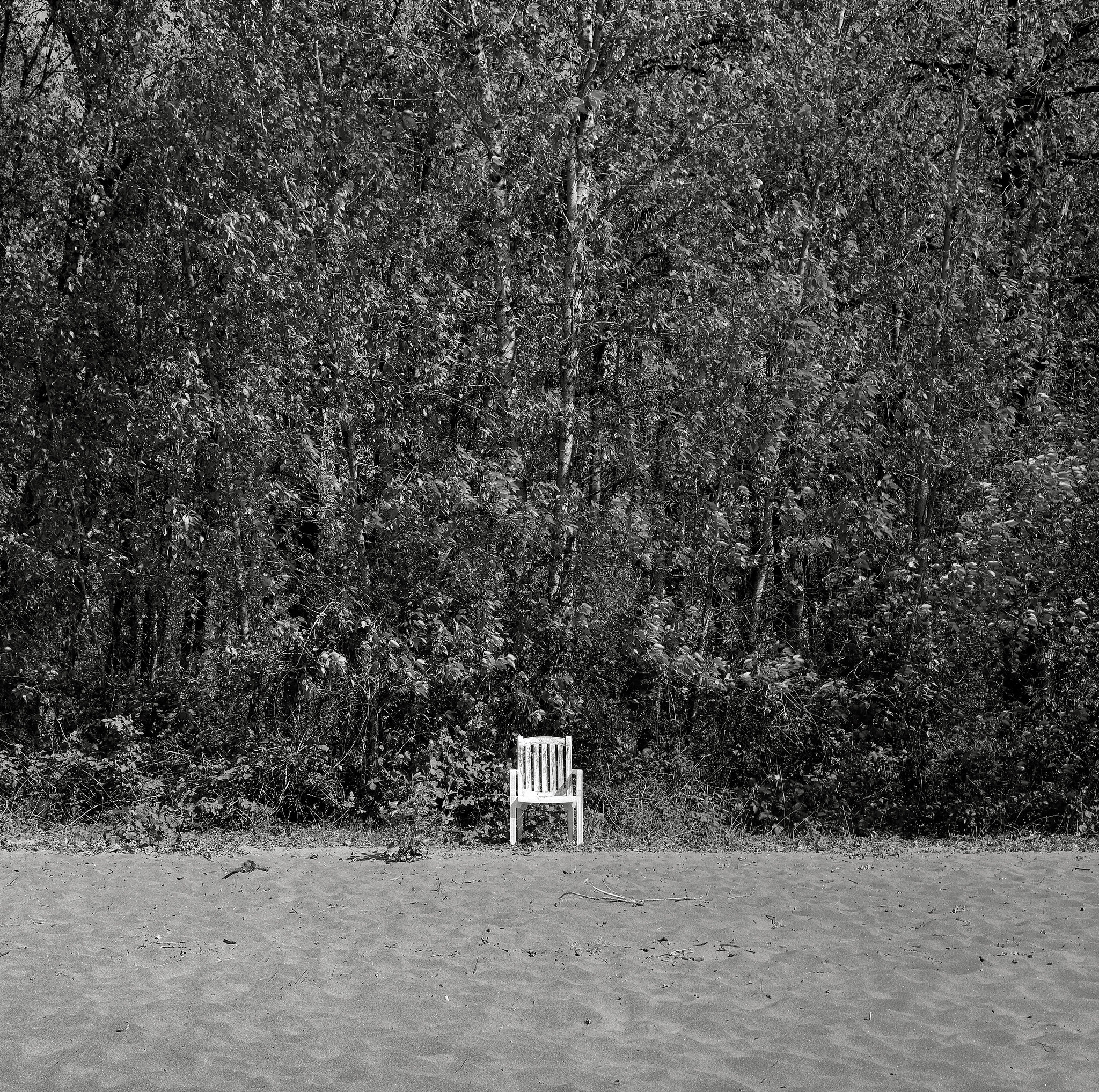Chair, Sauvie Island, Oregon