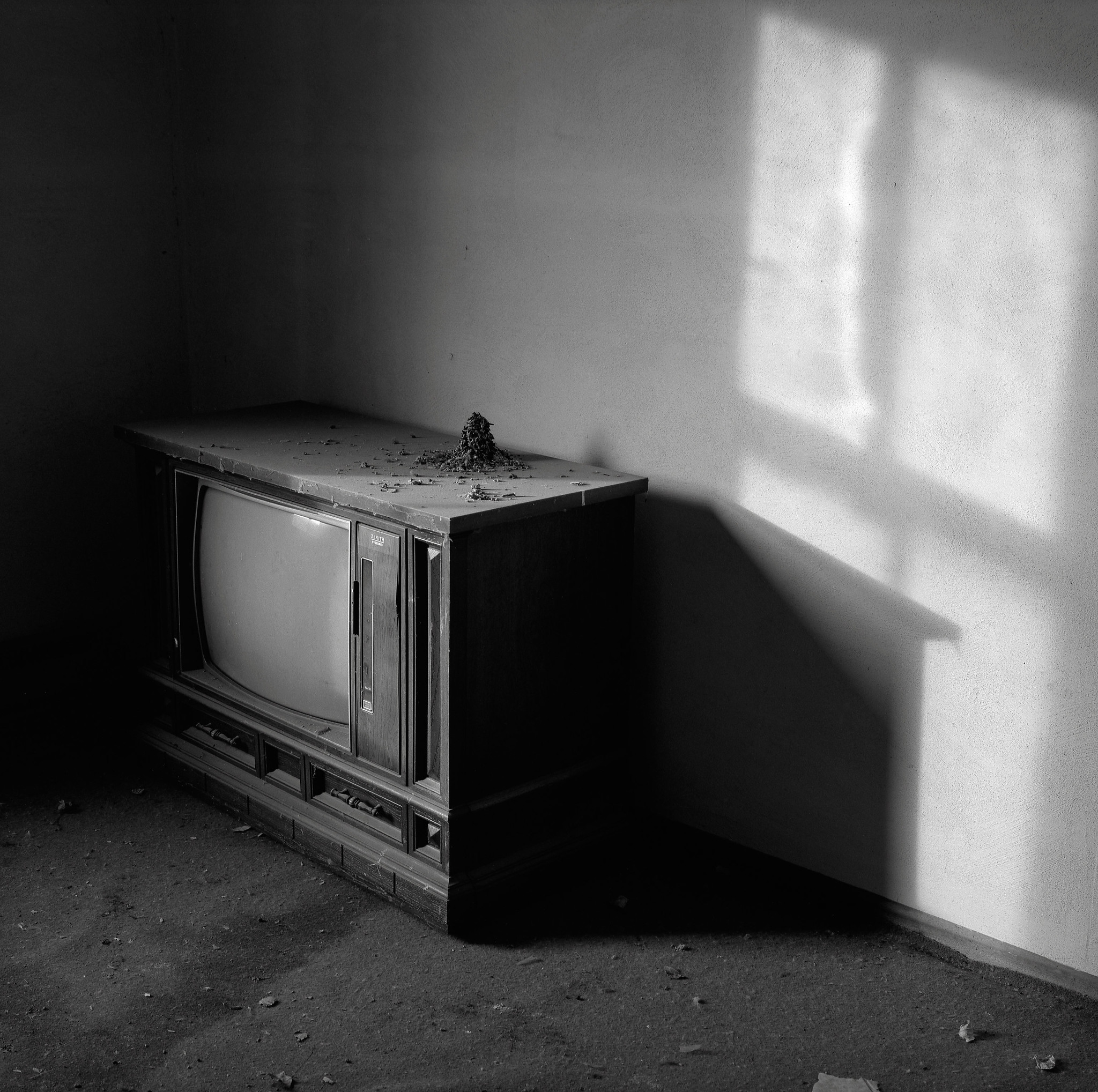 Television with Bird's Nest, Abandoned Farmhouse