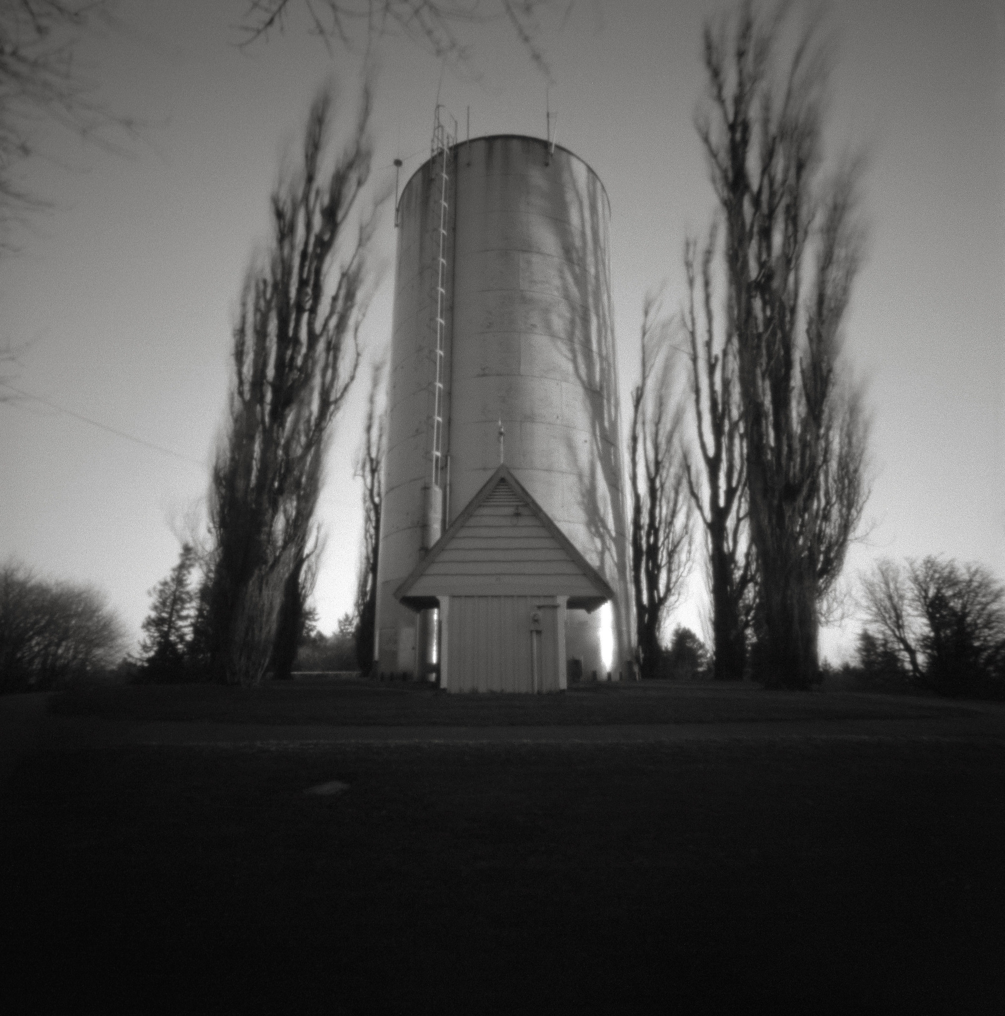 Water Tank with Blowing Poplars, Portland
