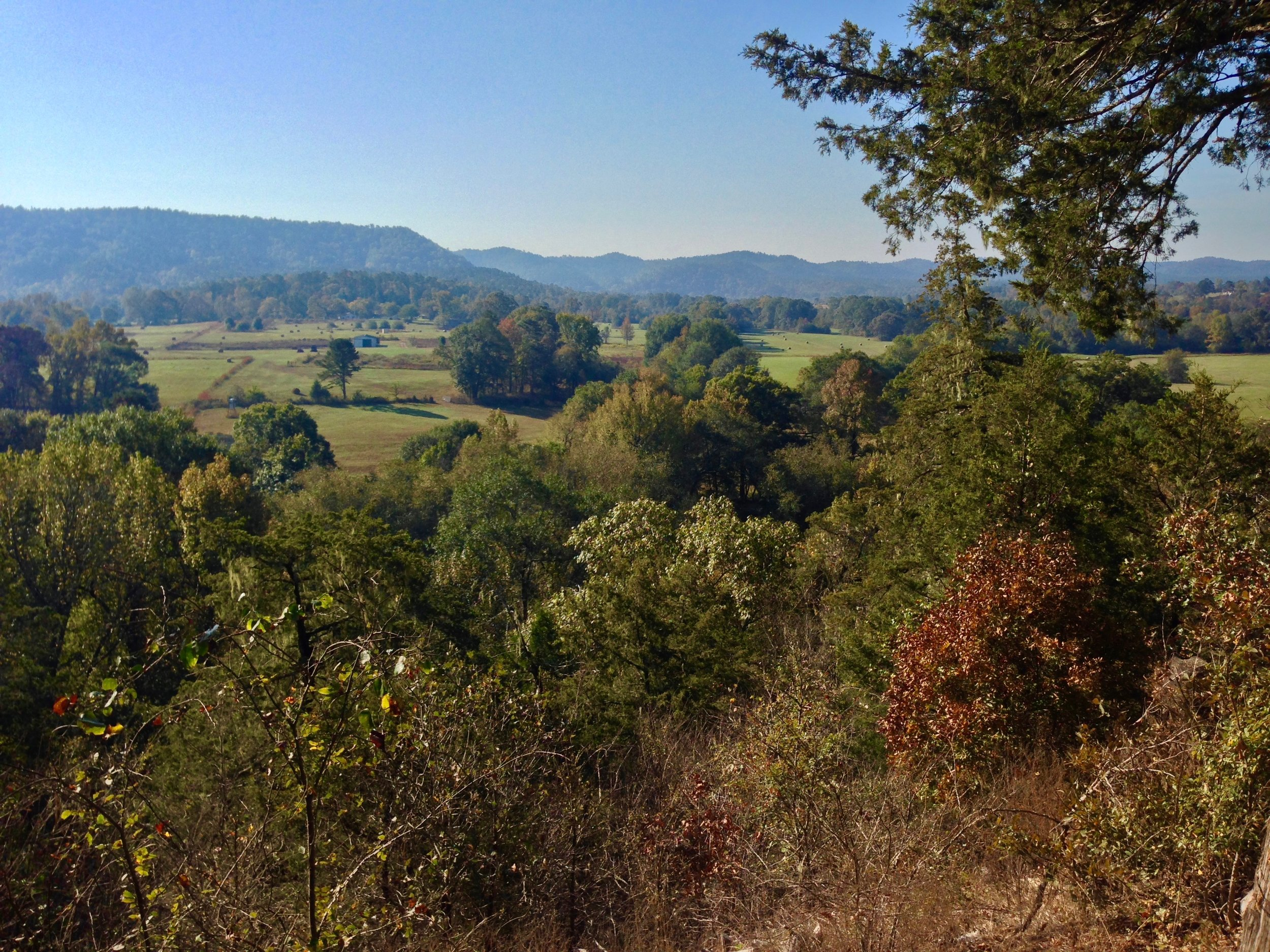 The Ouachita National Forest, Pencil Bluff, Arkansas