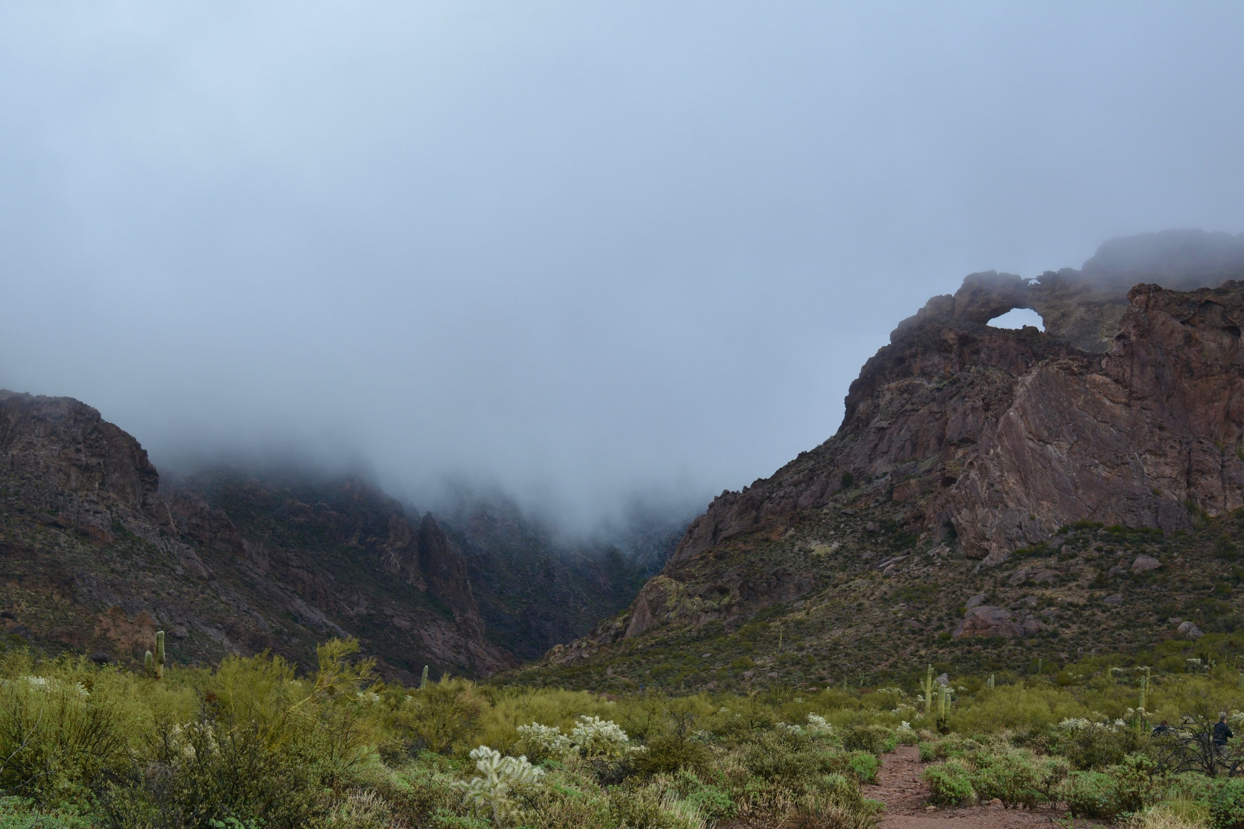 Arch Canyon in the fog