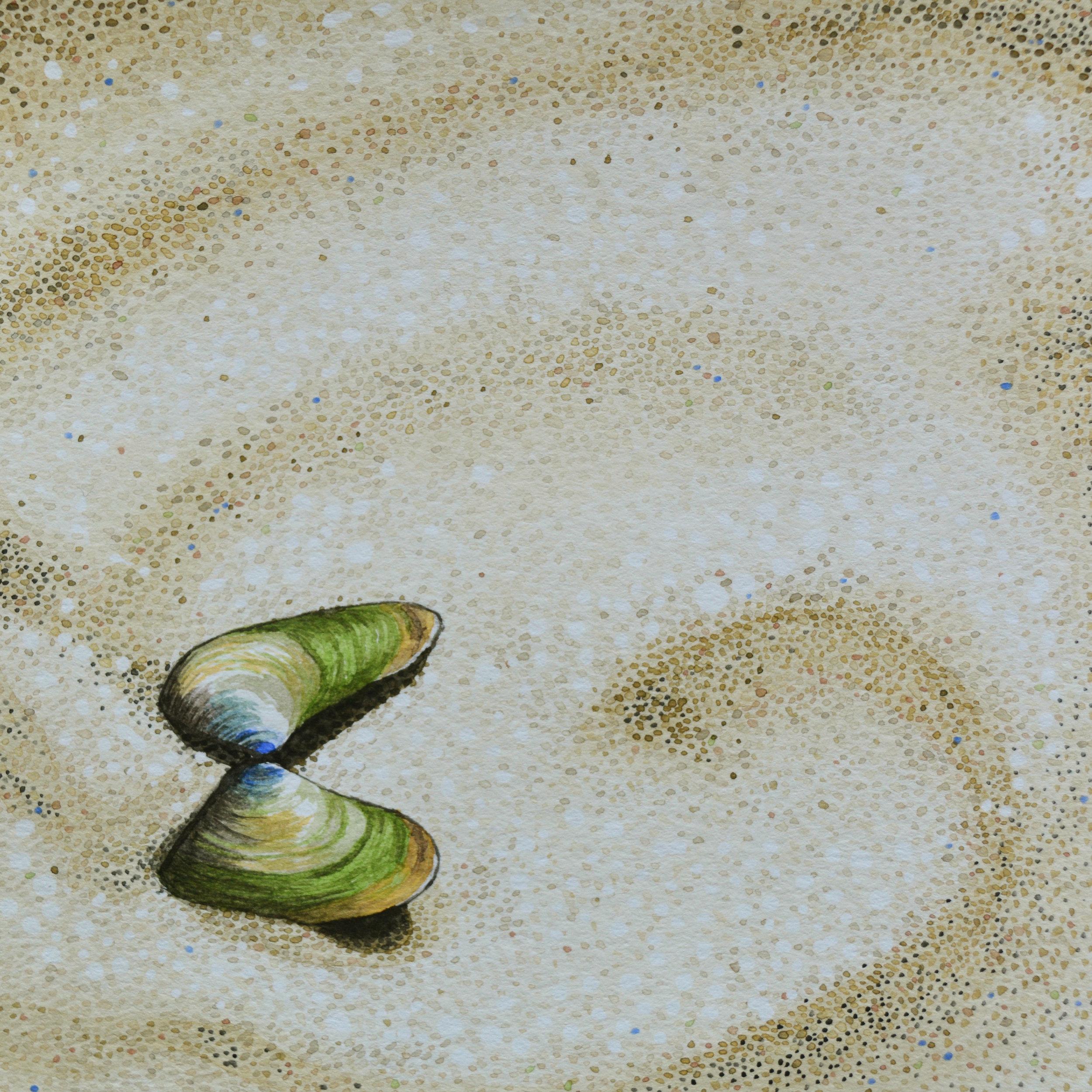 Gulf Islands National Seashore, Pensacola, Florida: 3/19/17, 13:05:29