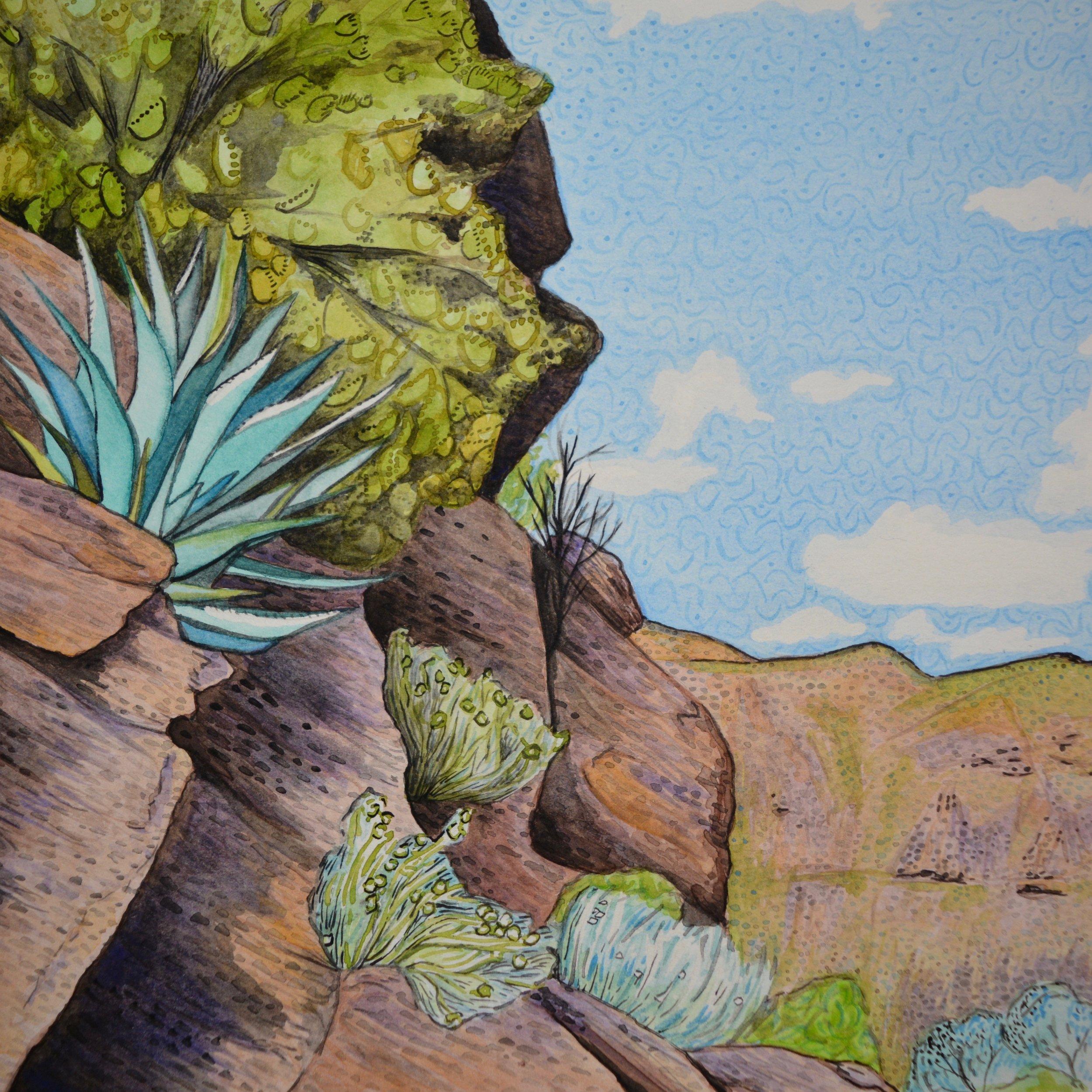 Organ Pipe Cactus National Monument, Arizona: 1/24/17, 14:20:29