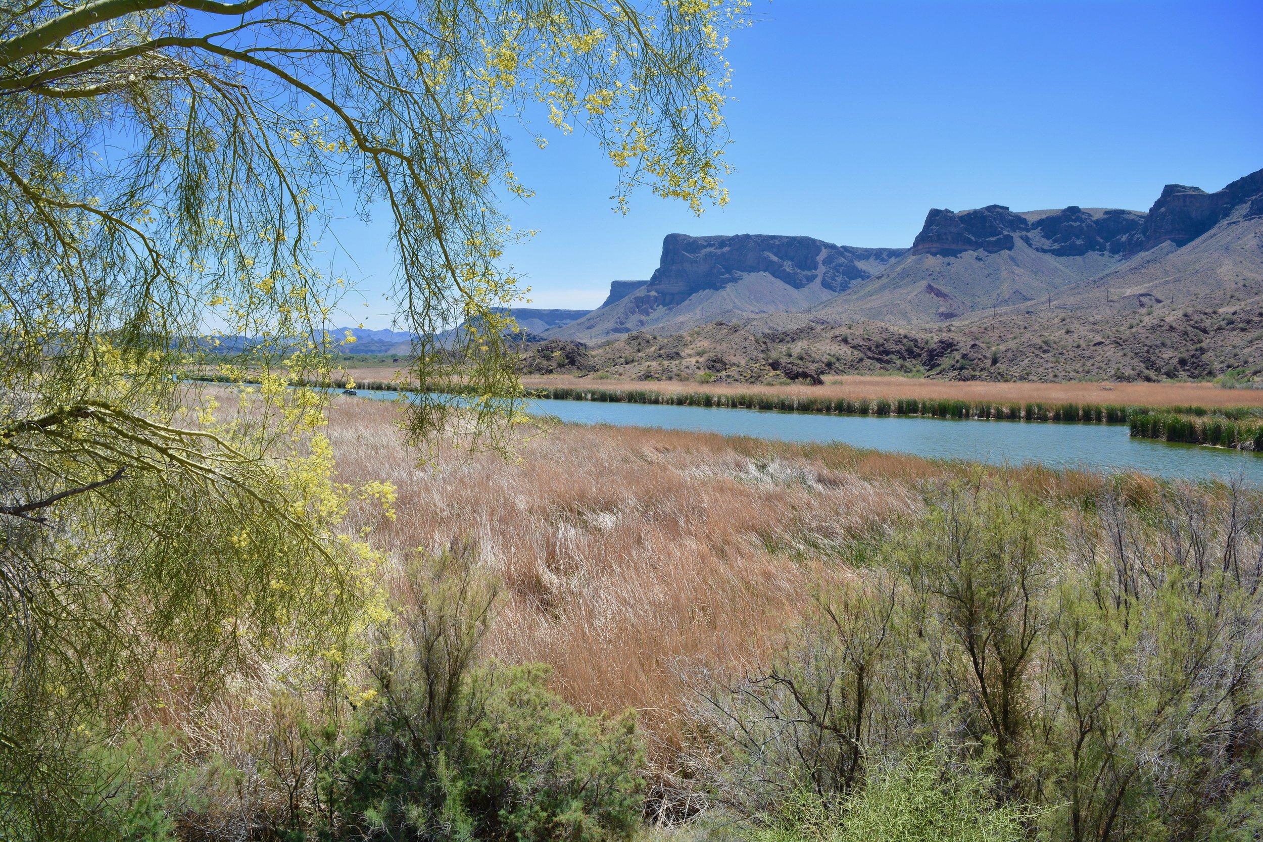 Lake Havasu near Parker, AZ