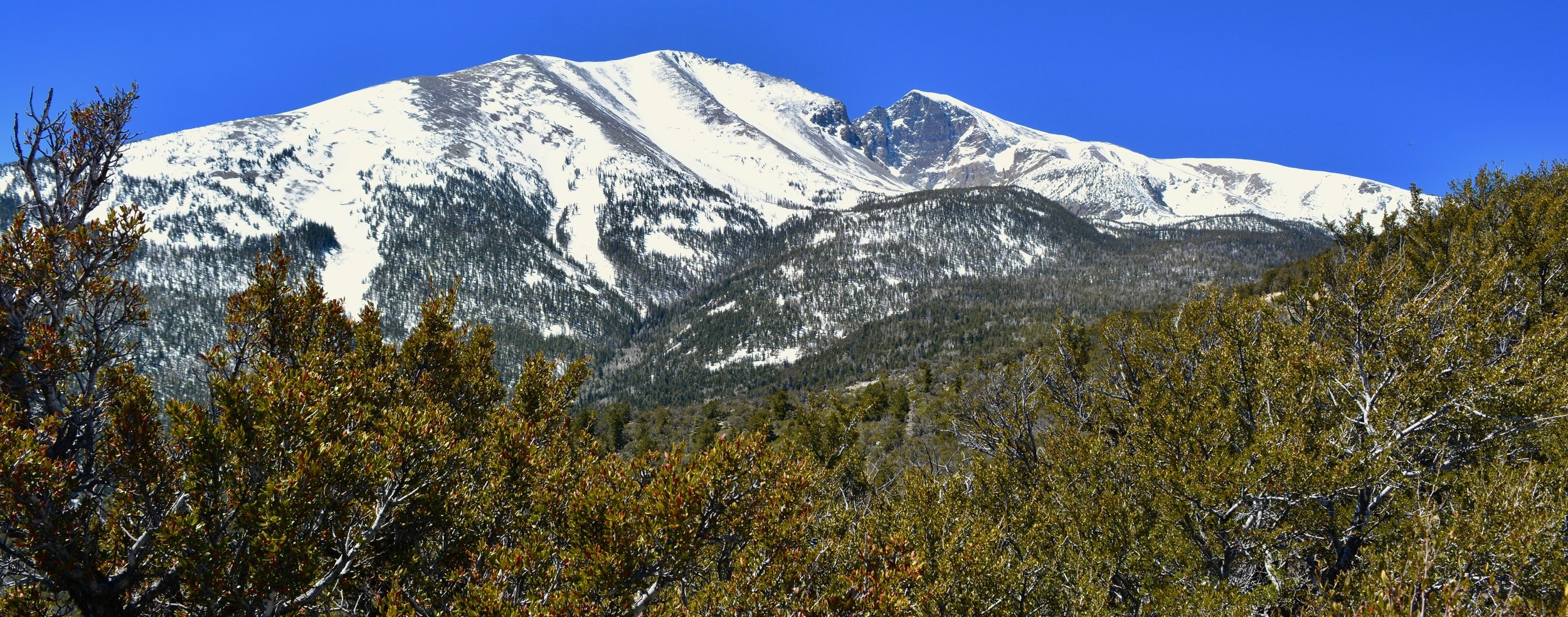 View from Mather Overlook at Great Basin National Park