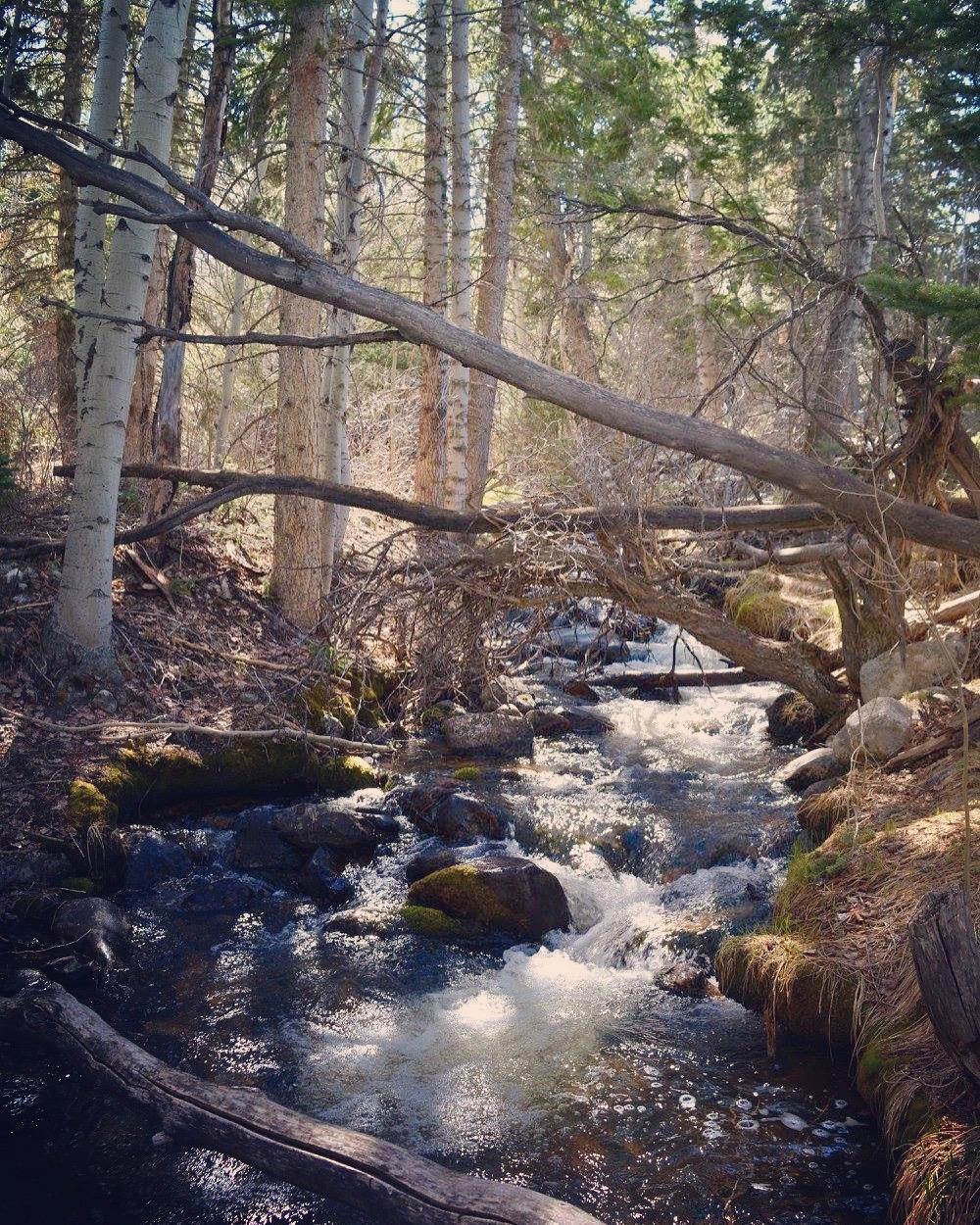 Baker Creek Trail