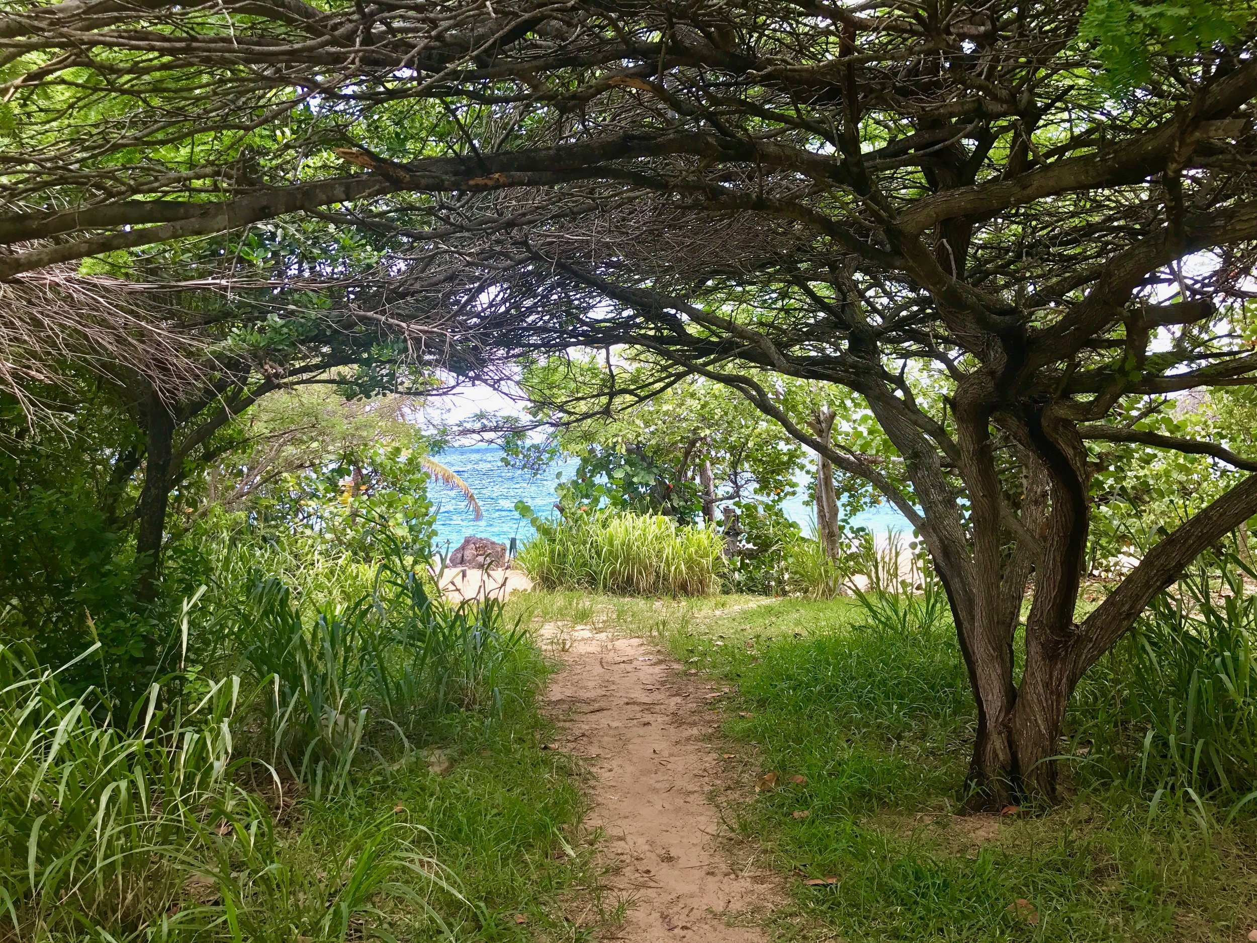 The hike to Happy Bay Beach
