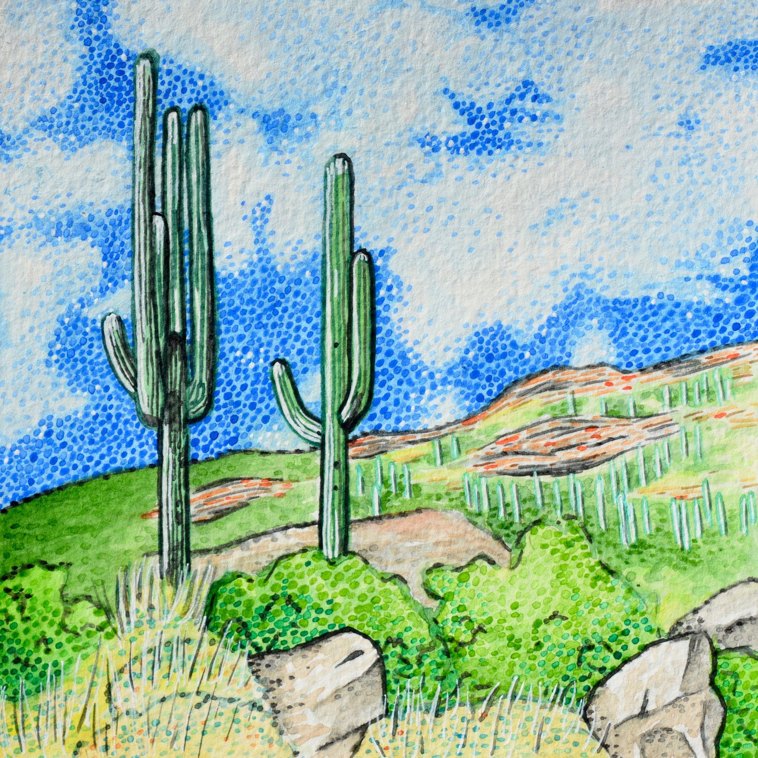 Tucson, Arizona: 9/5/17, 14:12:55
