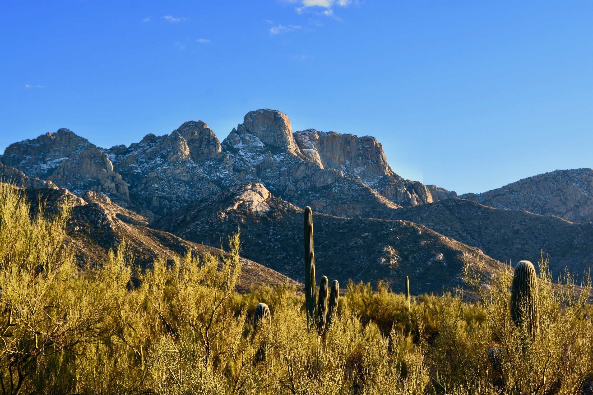 The snowy Catalina Mountains, February 28, 2018