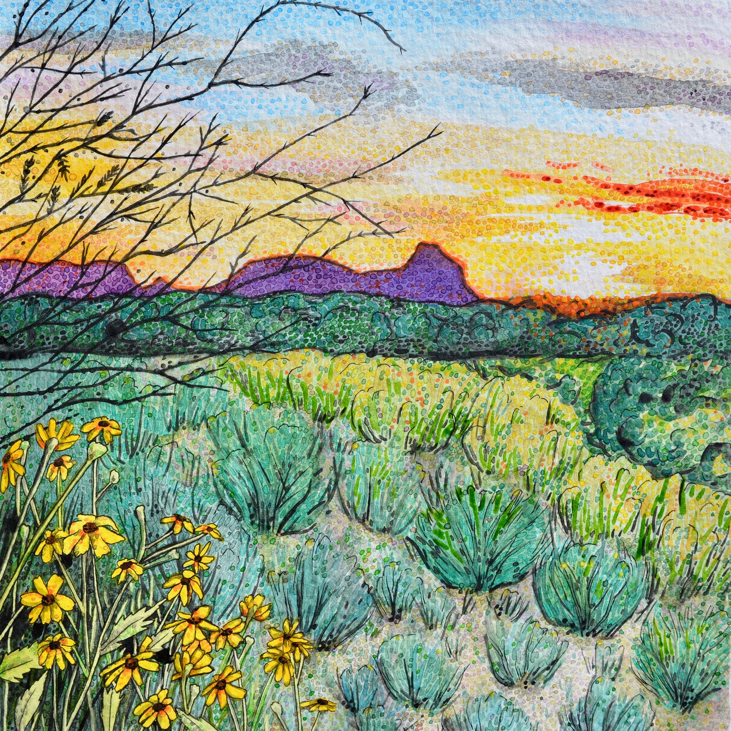 Casas Adobes, Arizona: 3/19/18, 18:34:44