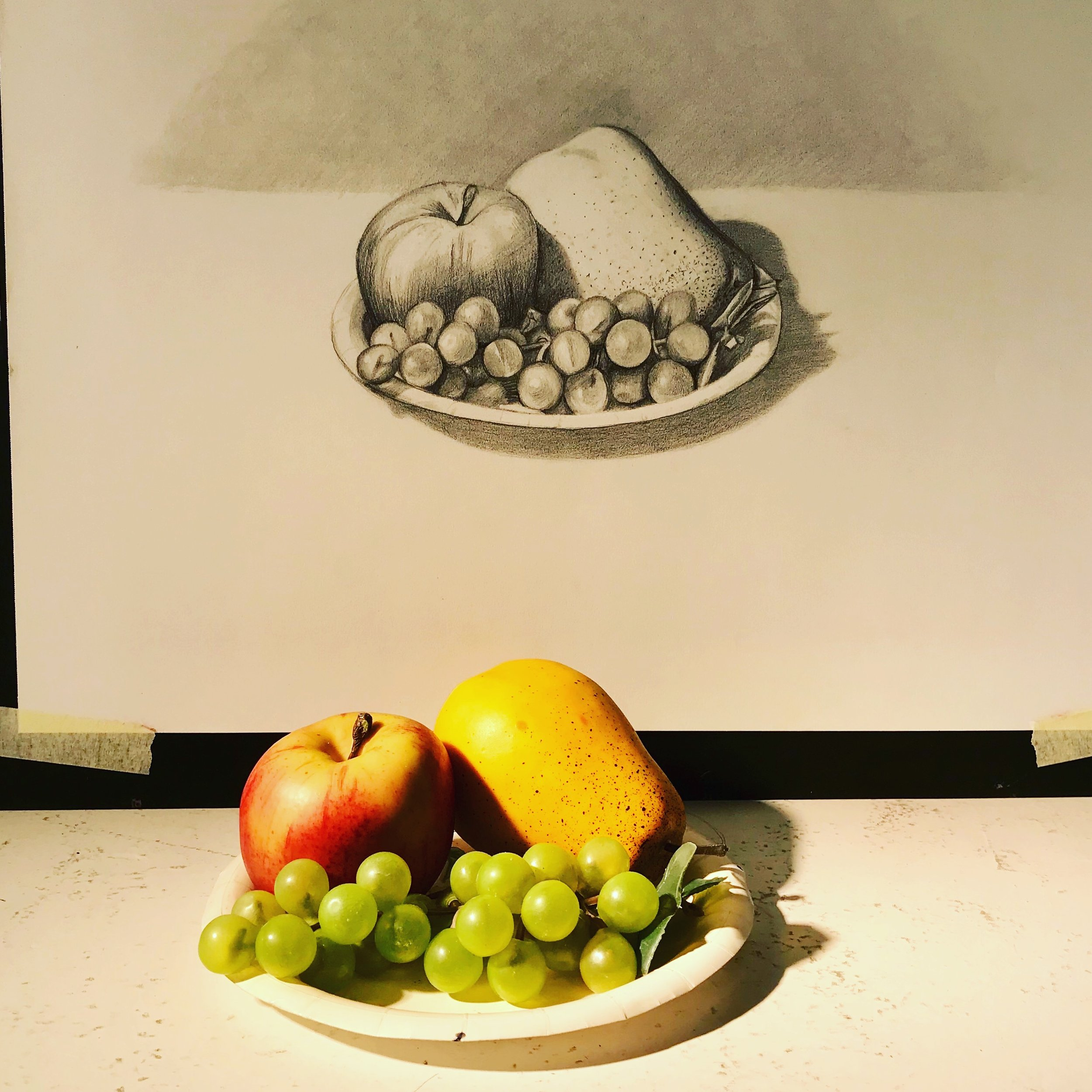 Drawing class still life