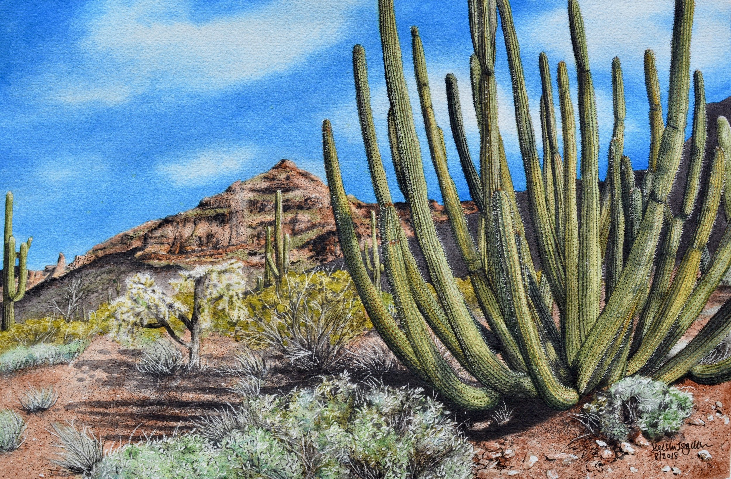 """Cactus Cartel""  For sale  as of this blog posting"