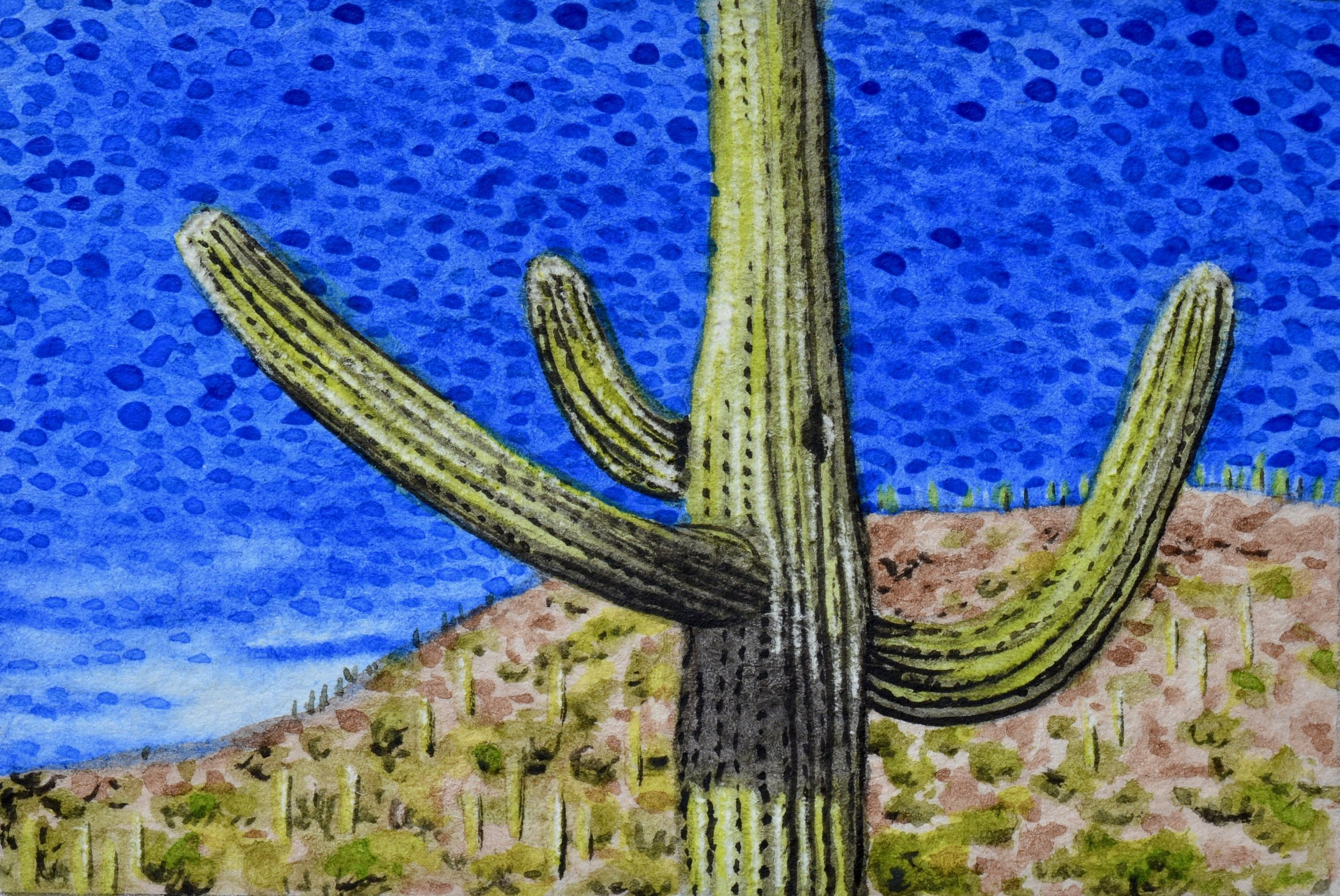 """Tucson, Arizona: 12/24/17, 15:21:20""  For sale  as of this blog posting"