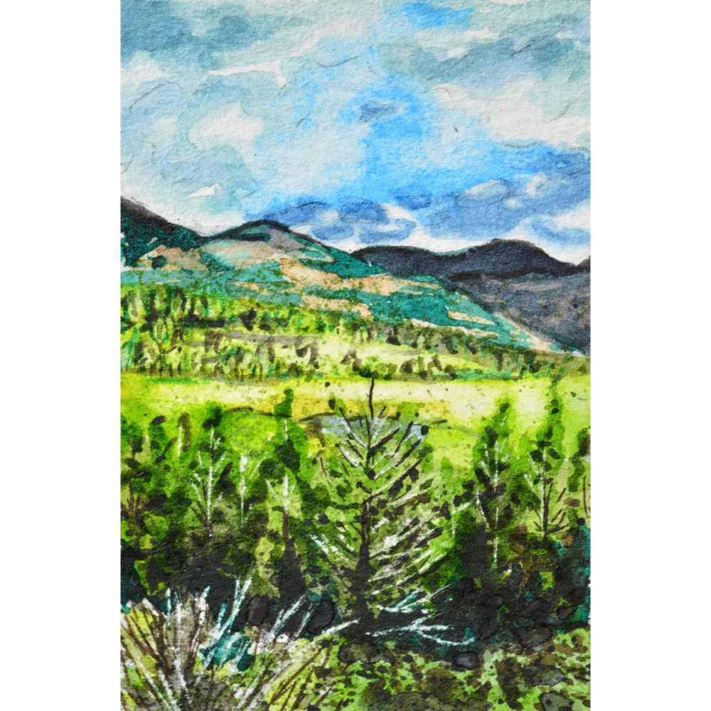 """Rocky Mountain National Park, Colorado: 5/27/18, 17:28:14"" SOLD"