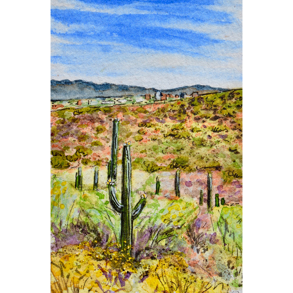 """Tumamoc Hill, Tucson, Arizona: 5/1/18, 11:57:08""  For sale  as of this blog posting"