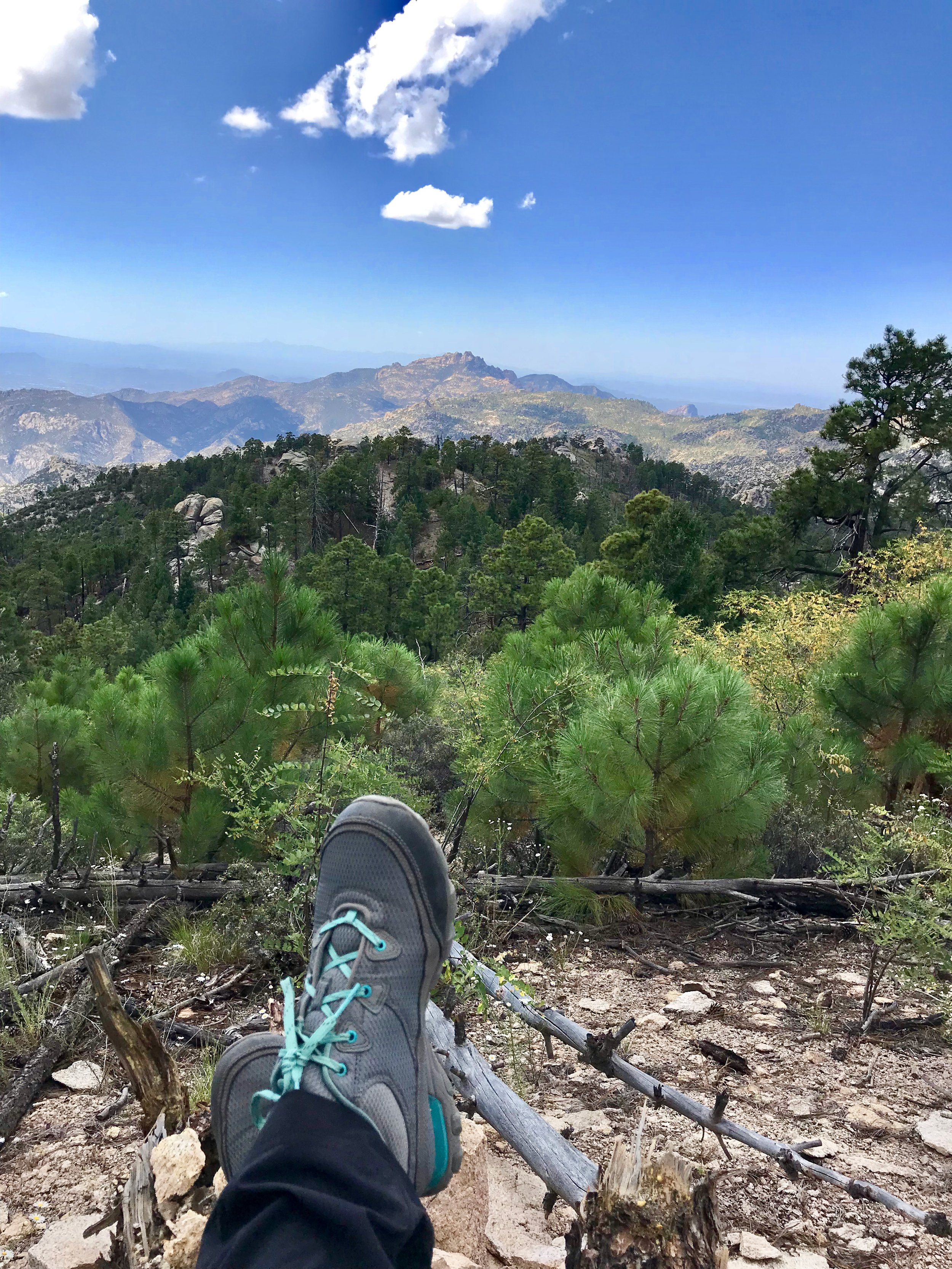 Taking a break on top of Mt. Lemmon